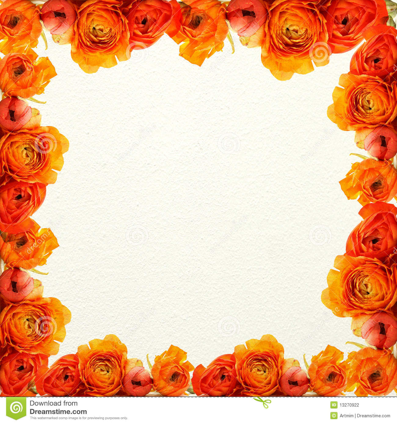 Orange Flowers And White Texture Background Stock