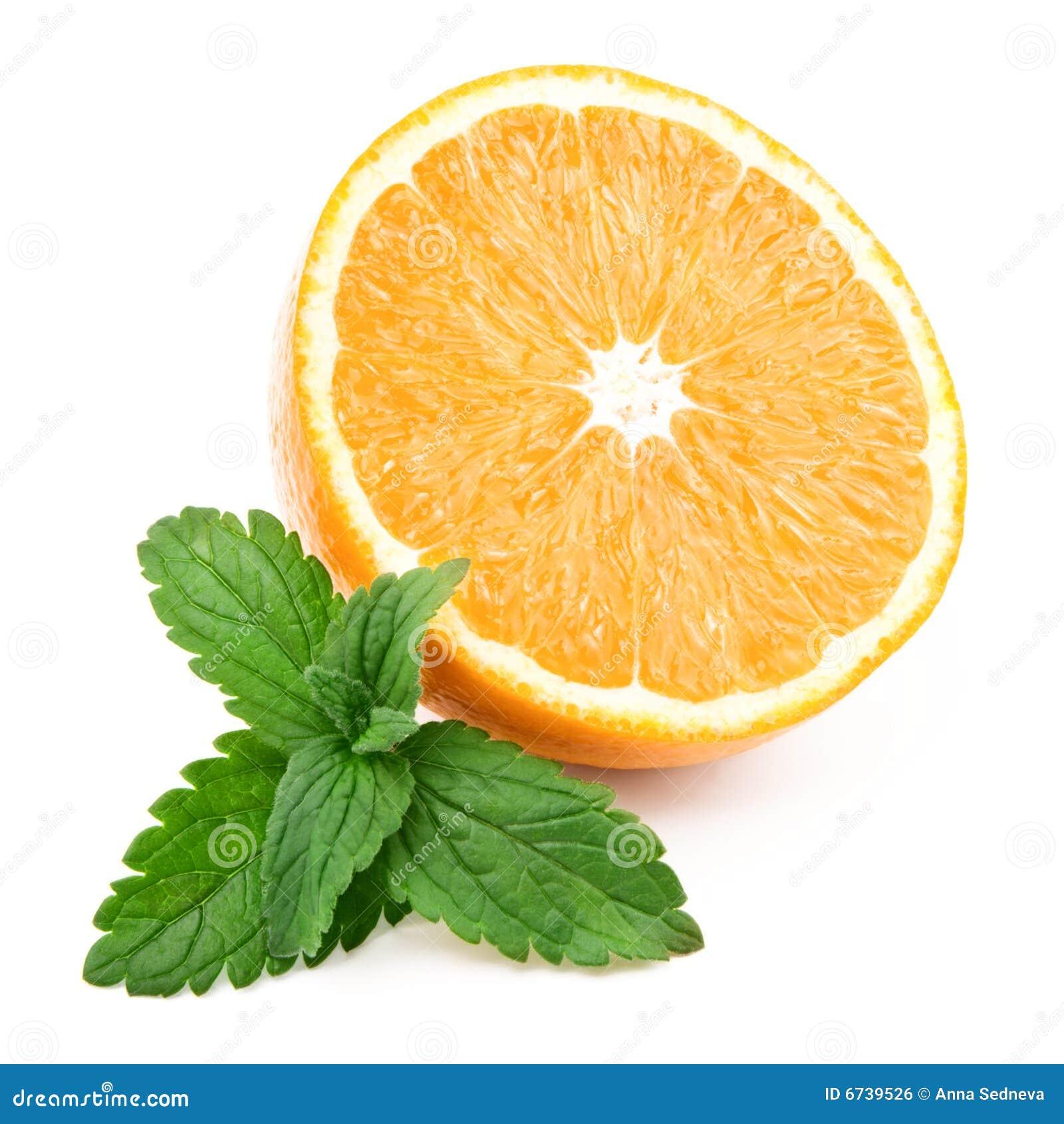 Orange and fresh mint stock photo. Image of crop, circle ...