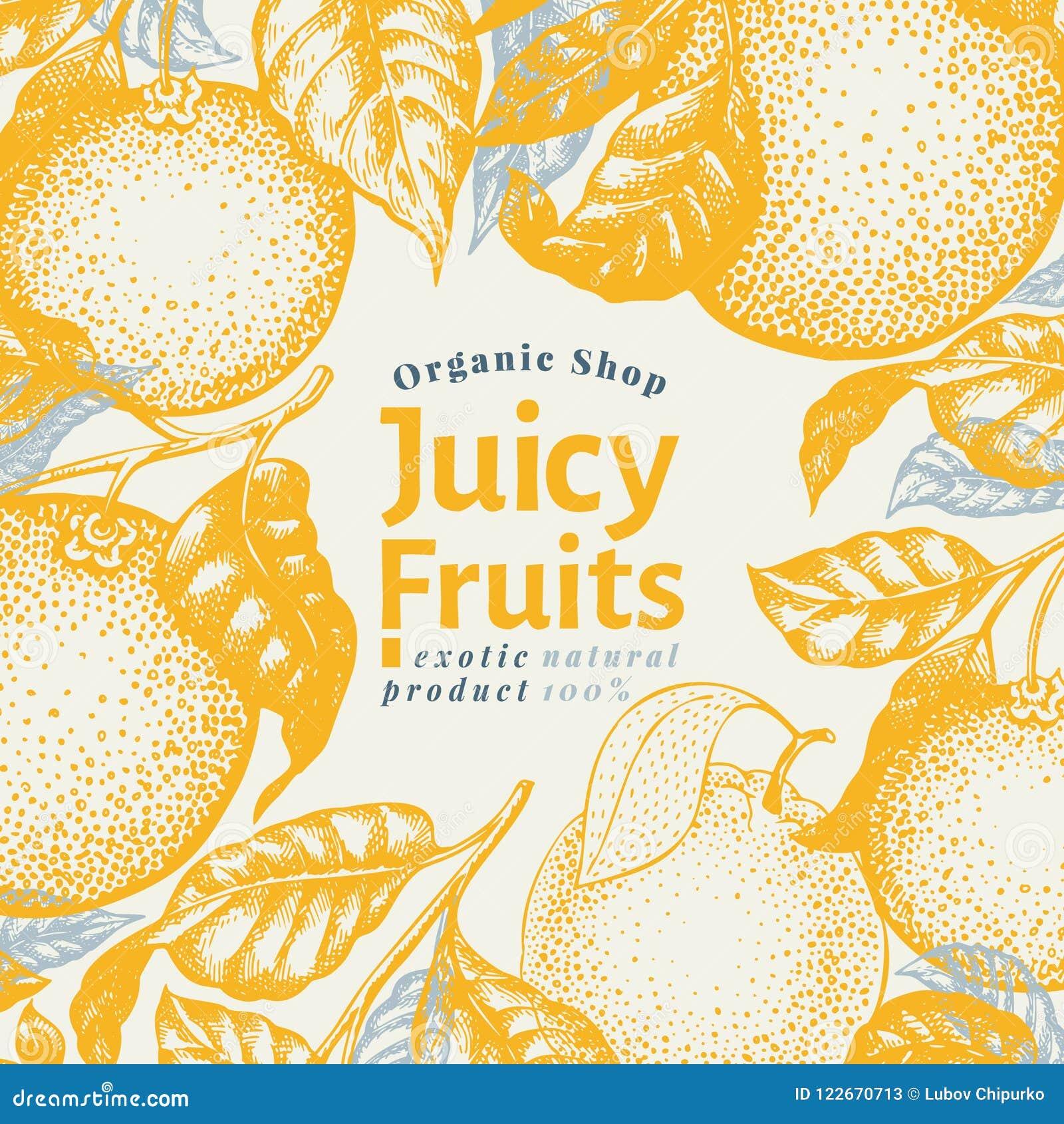 orange fruit design template. hand drawn vector fruit illustration