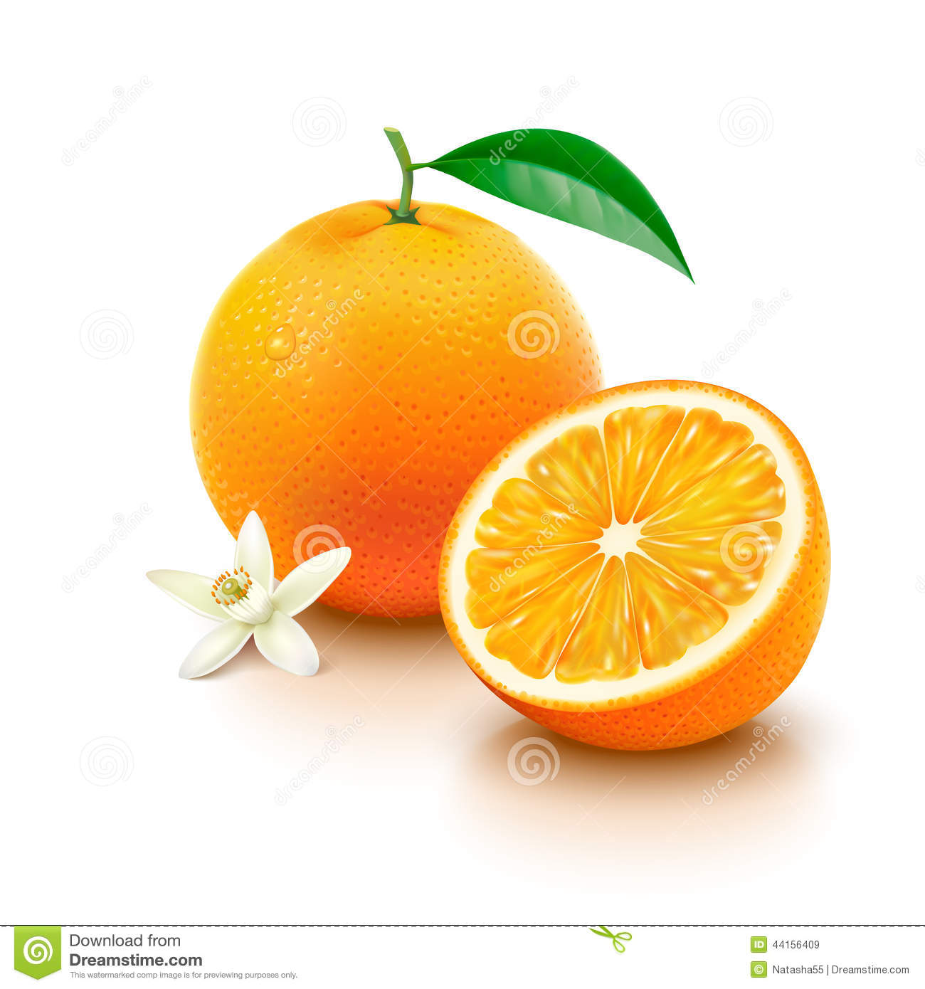 Orange Fruit With Half And Flower On White Background ...