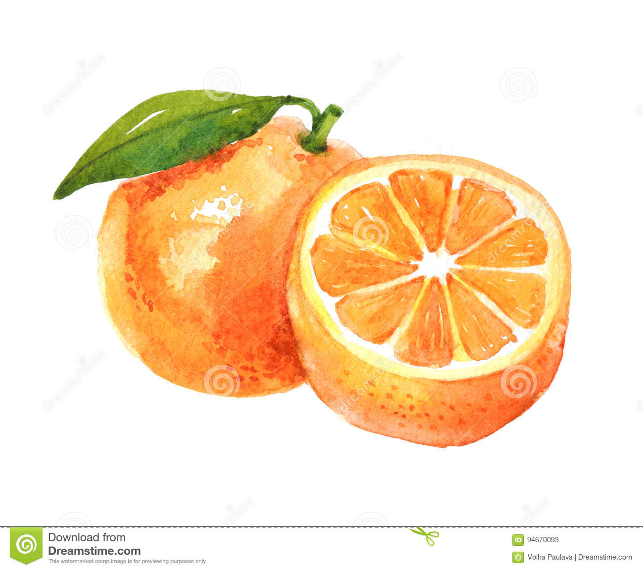 Pictures Of Orange Fruits
