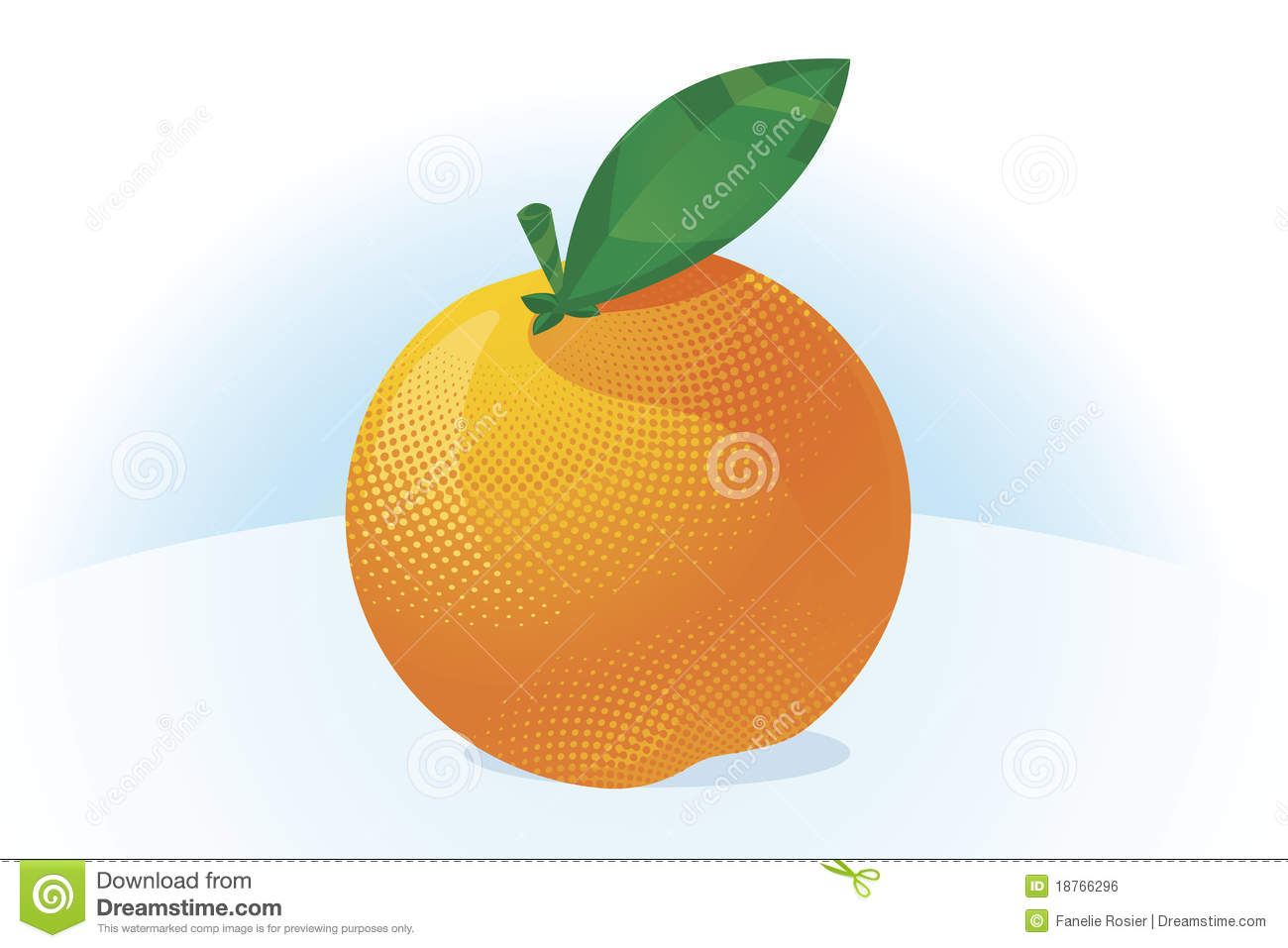 Orange Fruit Vector Orange fruit ve...
