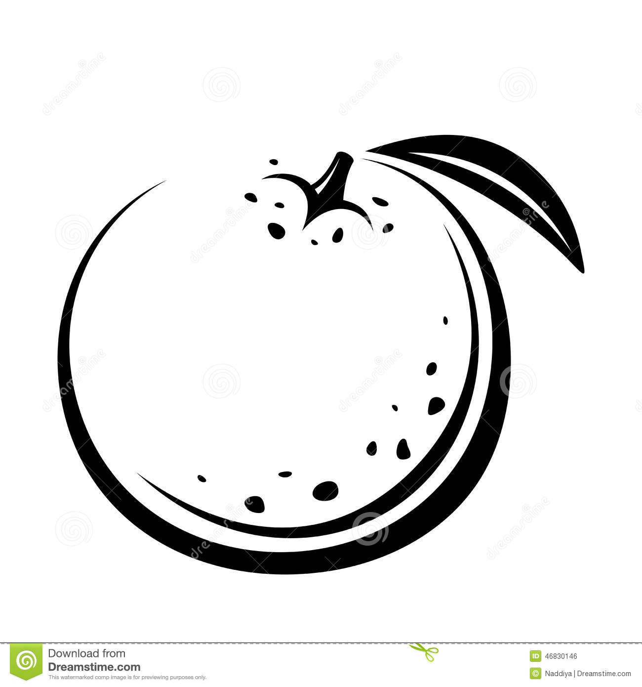 Orange Fruit  Vector Black Contour Drawing  Stock Vector