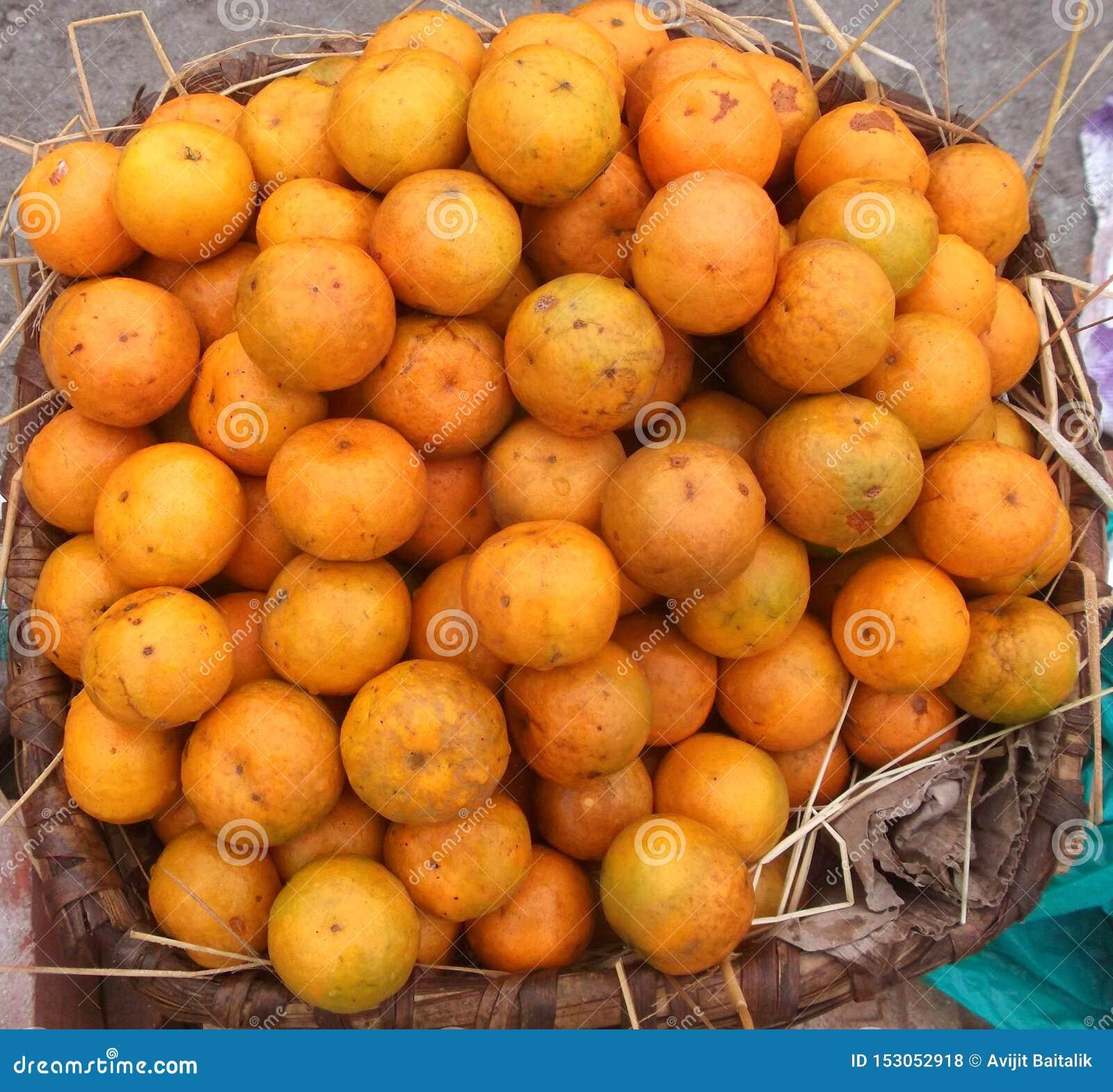 Orange frukthink, Bhutan