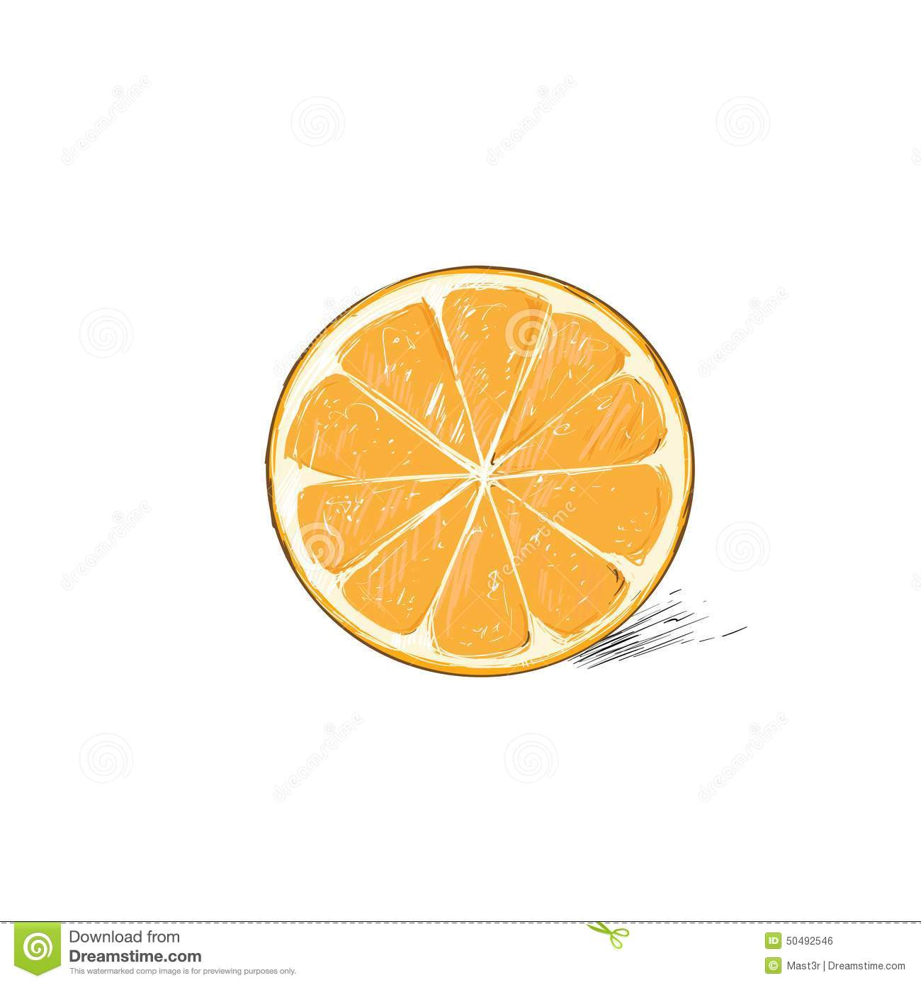 Orange Half Cut Circle Citrus Fruit Color Sketch Stock ...