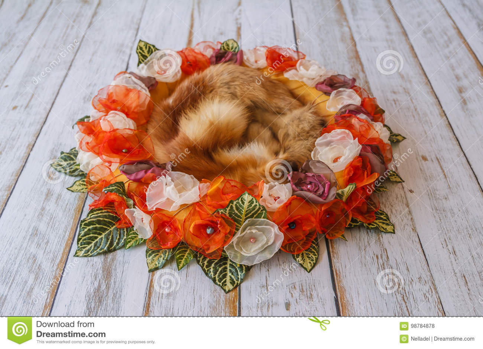Orange Handmade Flower Circle For Newborn Babies With Fox Fur In ...