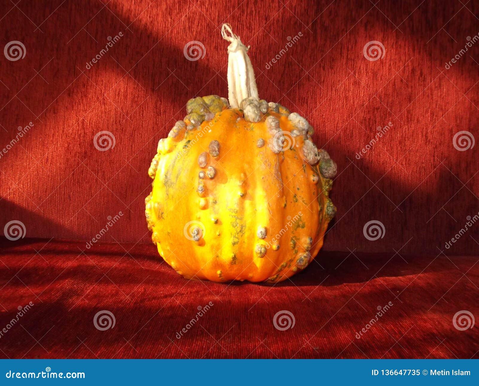 Orange Kürbis Halloweens und roter Hintergrund
