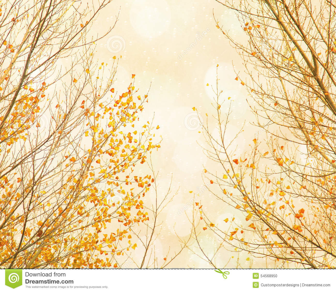Download Orange Leaves Twinkling In The Sky. Stock Photo - Image of halos, magic: 54568950
