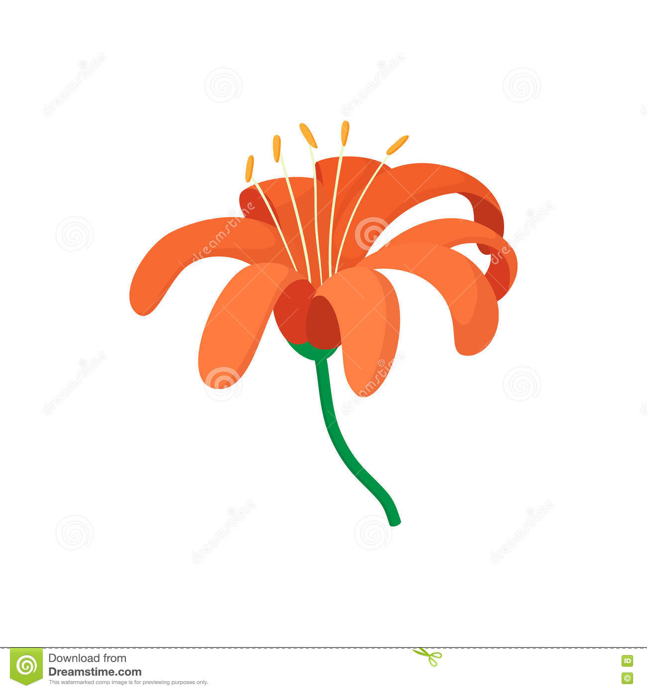 Orange lily icon cartoon style stock vector illustration of download orange lily icon cartoon style stock vector illustration of detail gardening izmirmasajfo