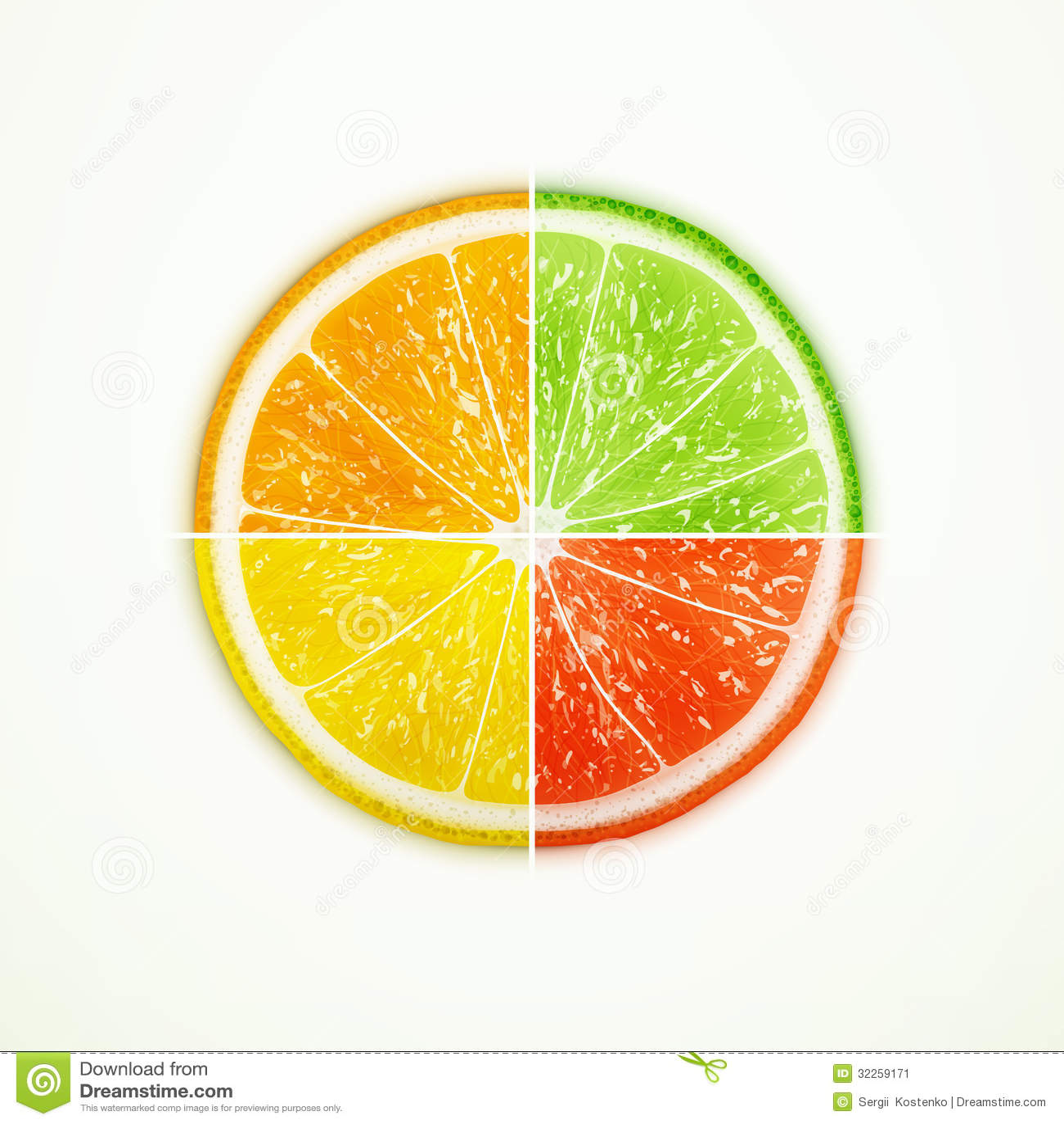 Orange, lime, lemon and grapefruit quartered eps10 vector illustration ...