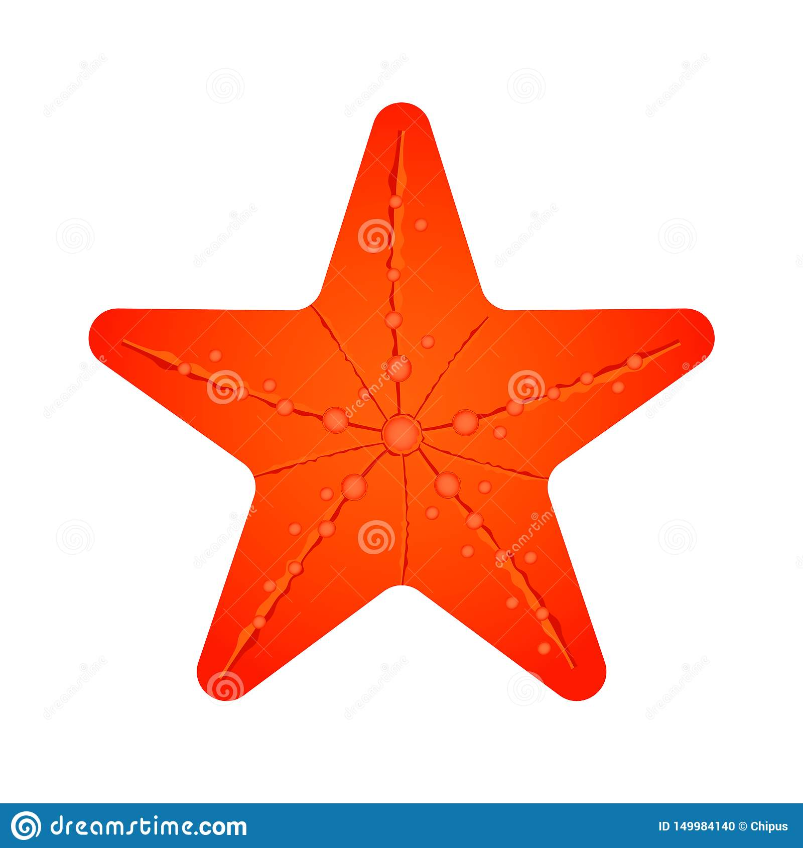 Orange perfect sea star. Isolated vector illustration