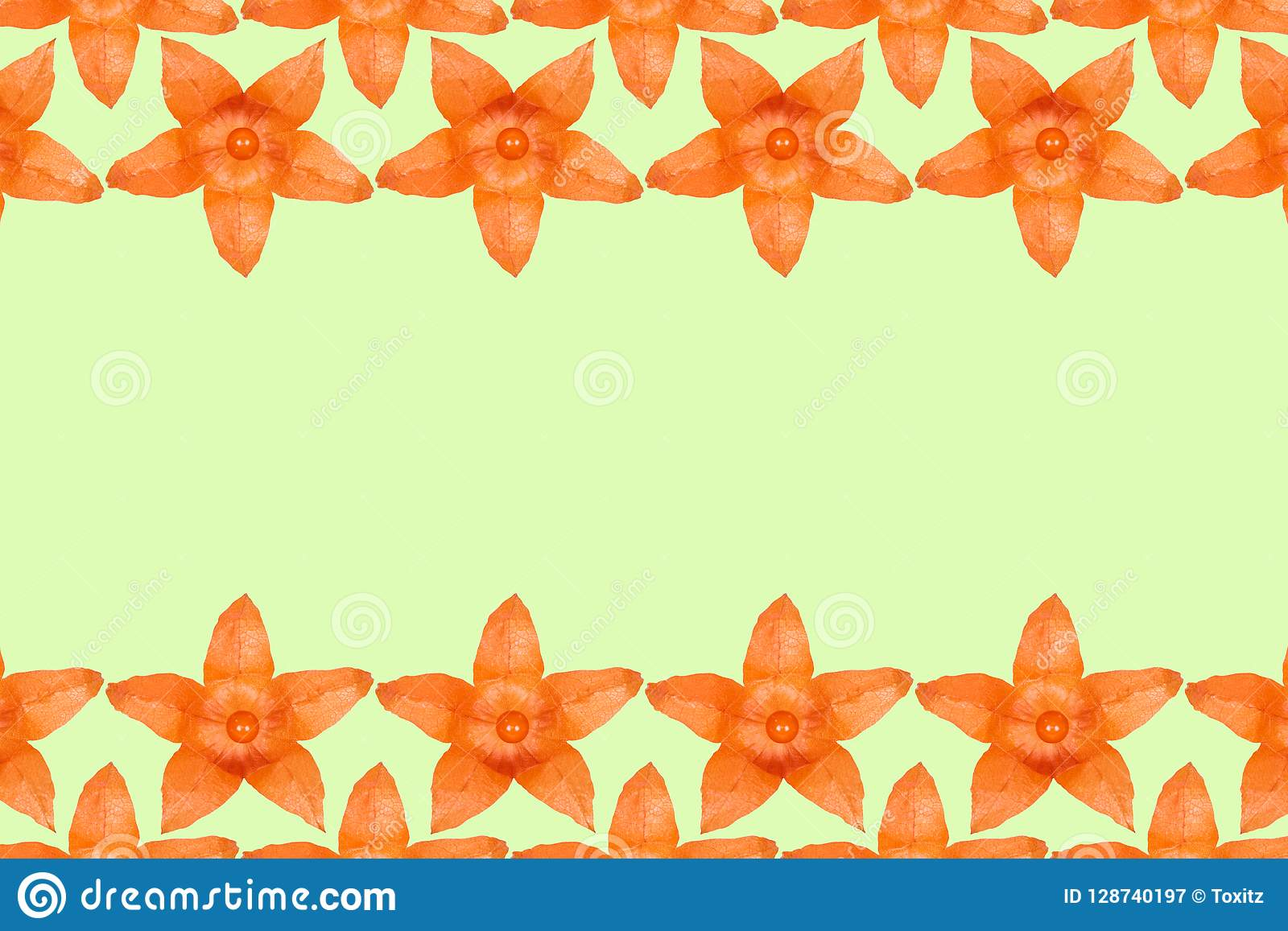 Orange physalis pattern background, flat lay with copy space