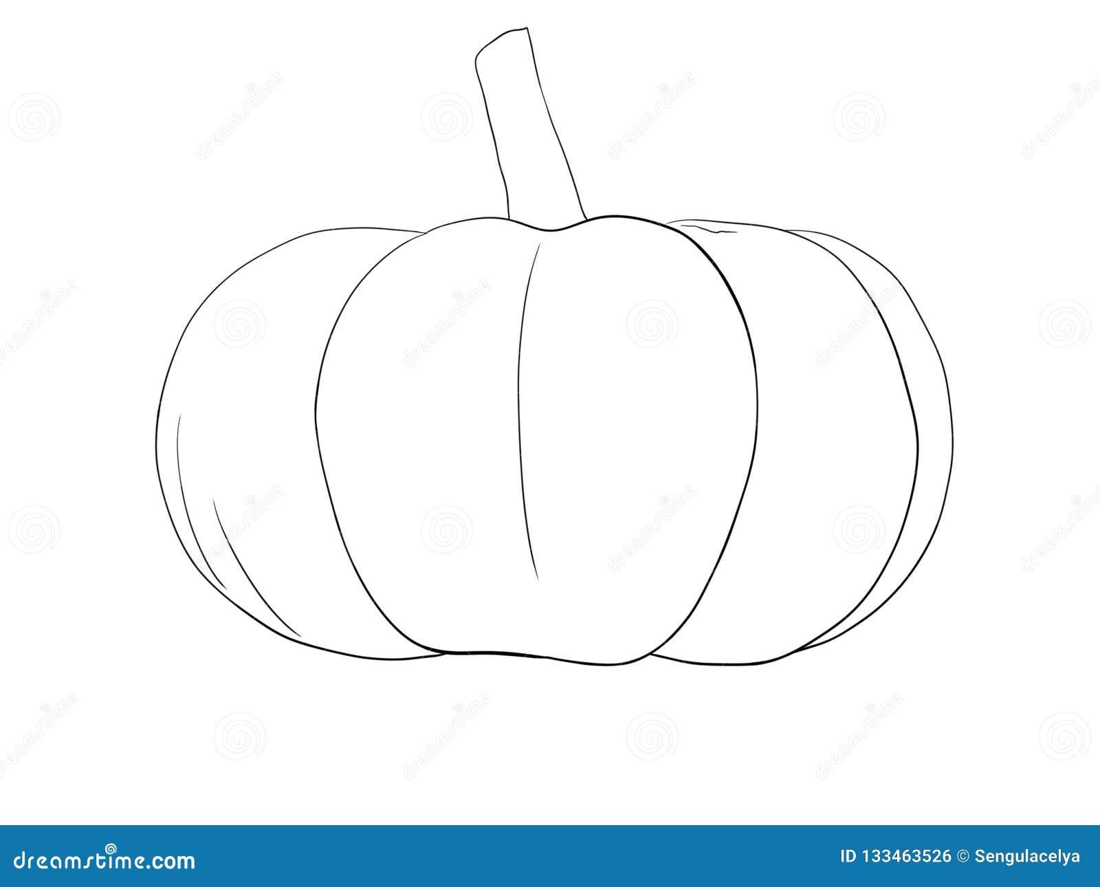 Pumpkin Illustration artvector
