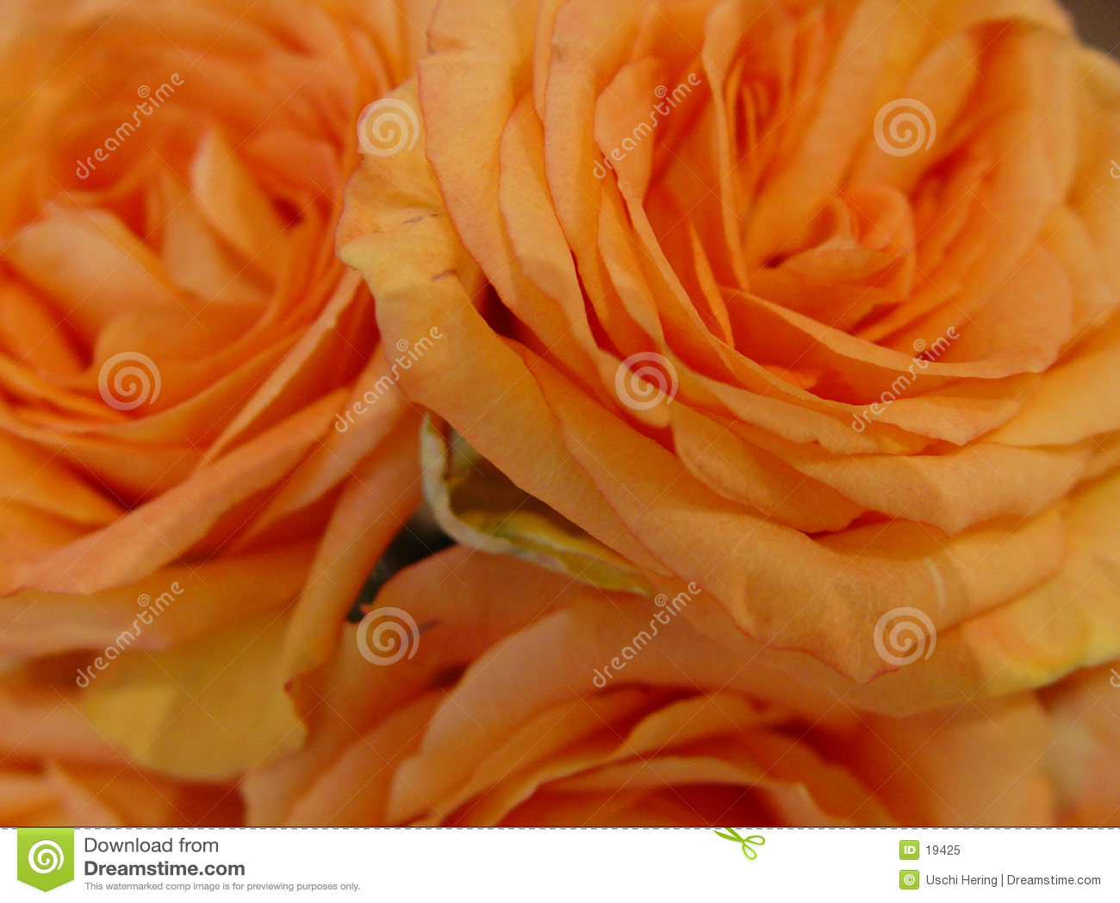 Orange ro