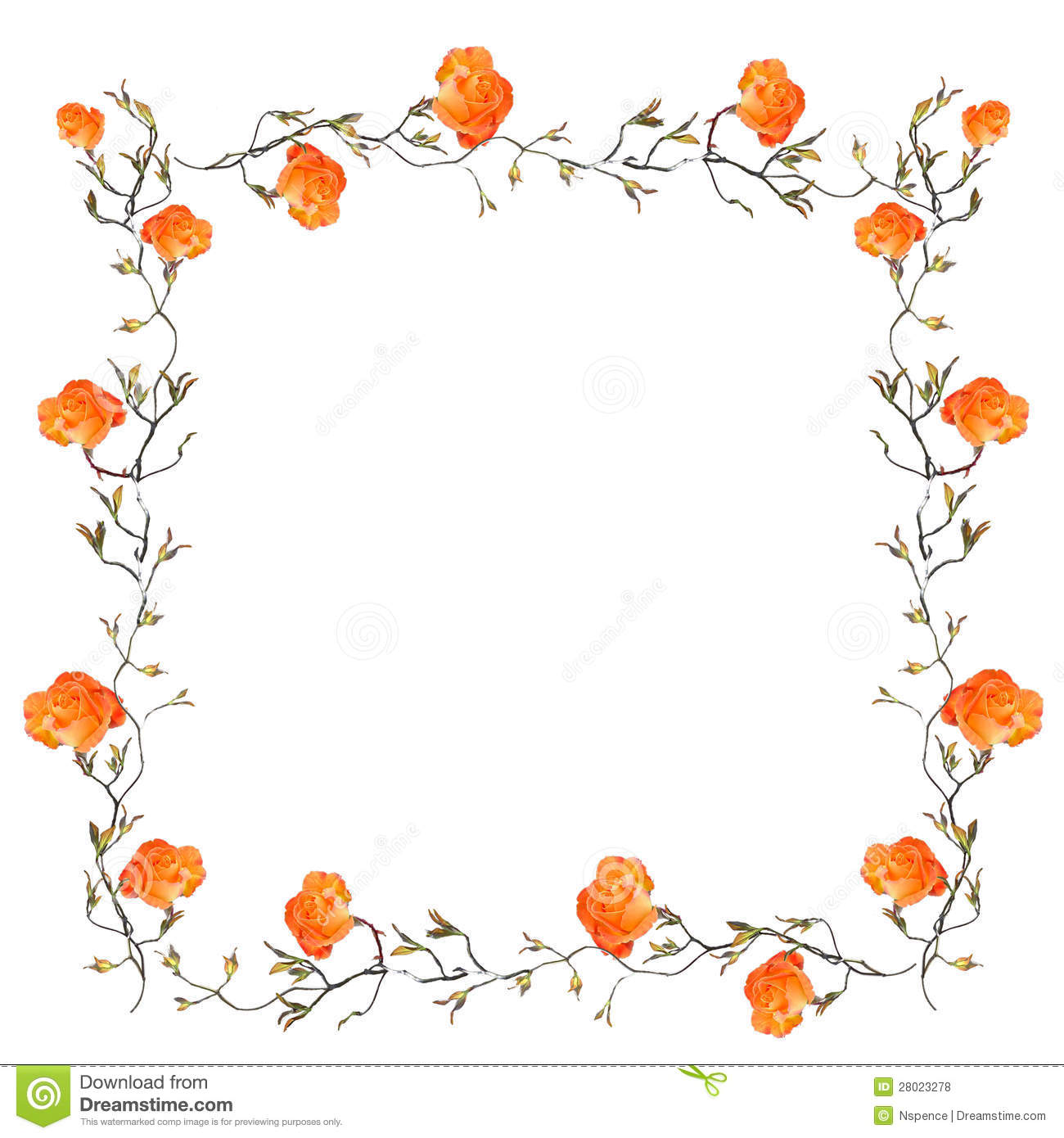 Orange Rose Border With Copy Space Royalty Free Stock Photos - Image ...