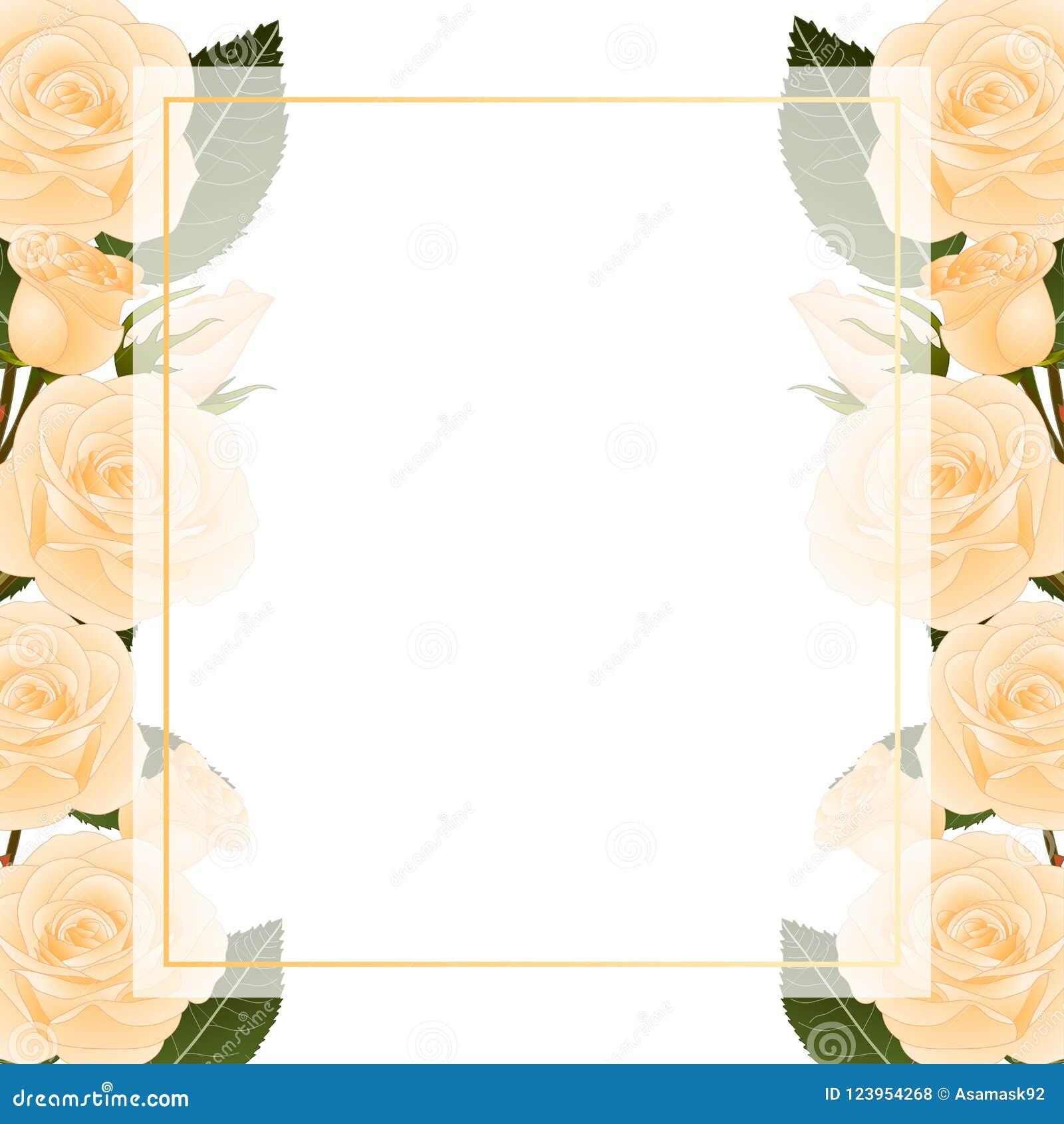 Orange Rose Flower Frame Banner Card Border. isolated on White Background. Vector Illustration