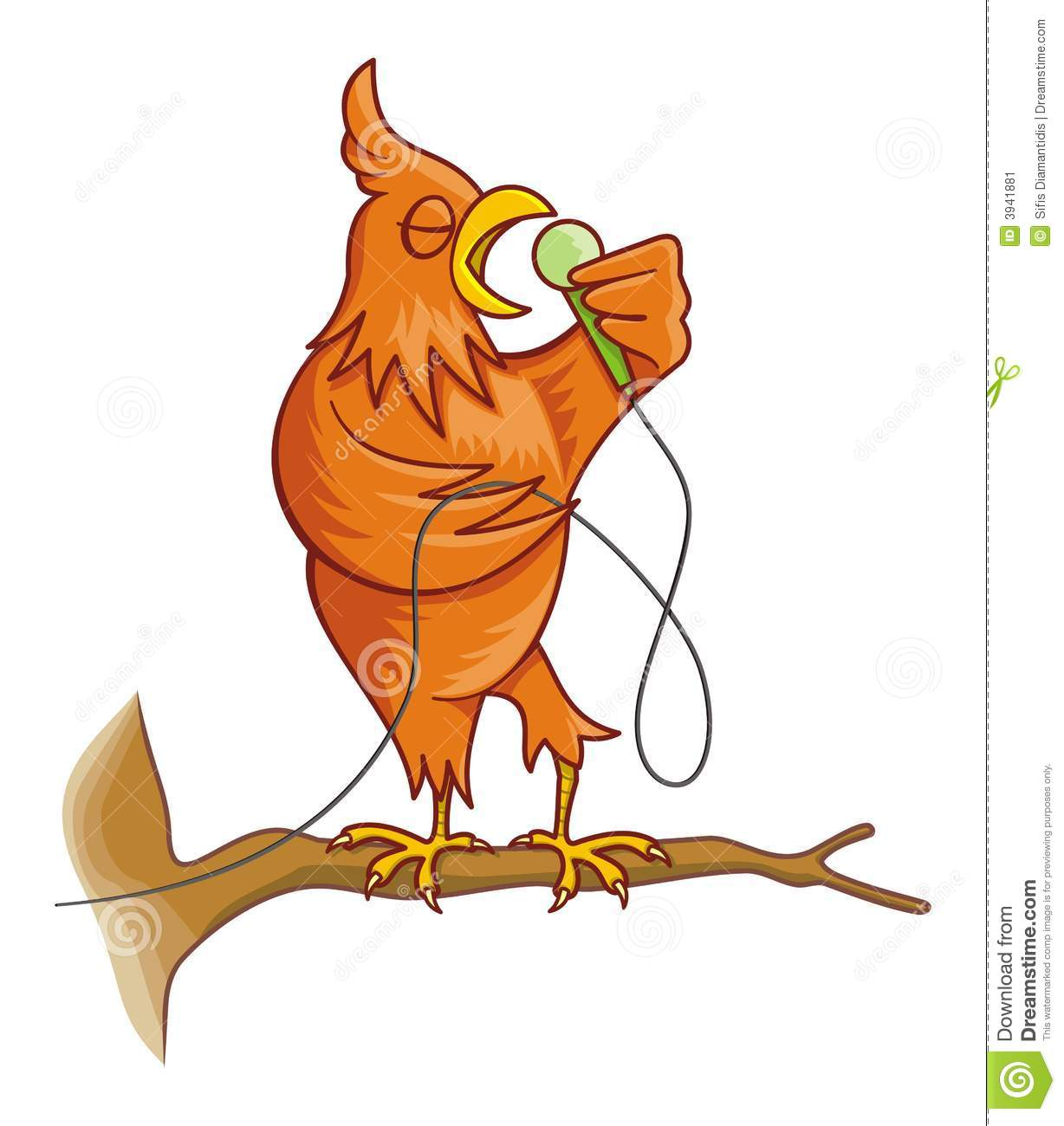 Orange singing canary bird