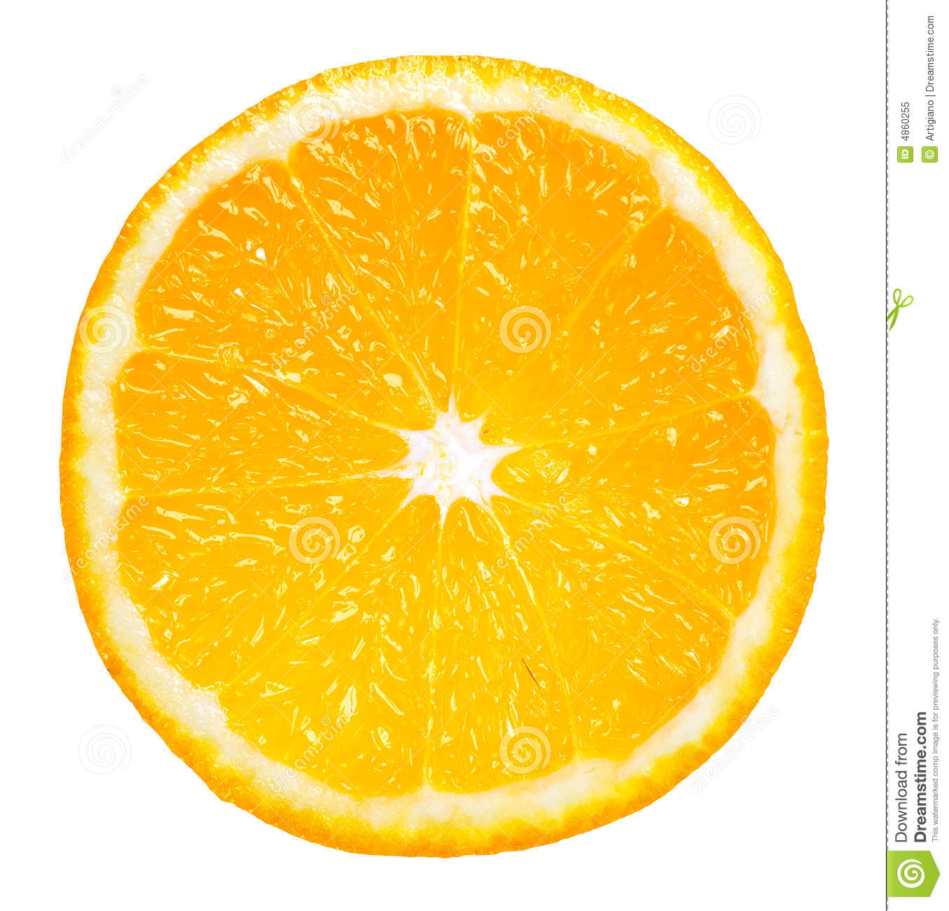 Orange Slice Stock Image Image Of Fresh Orange Slice