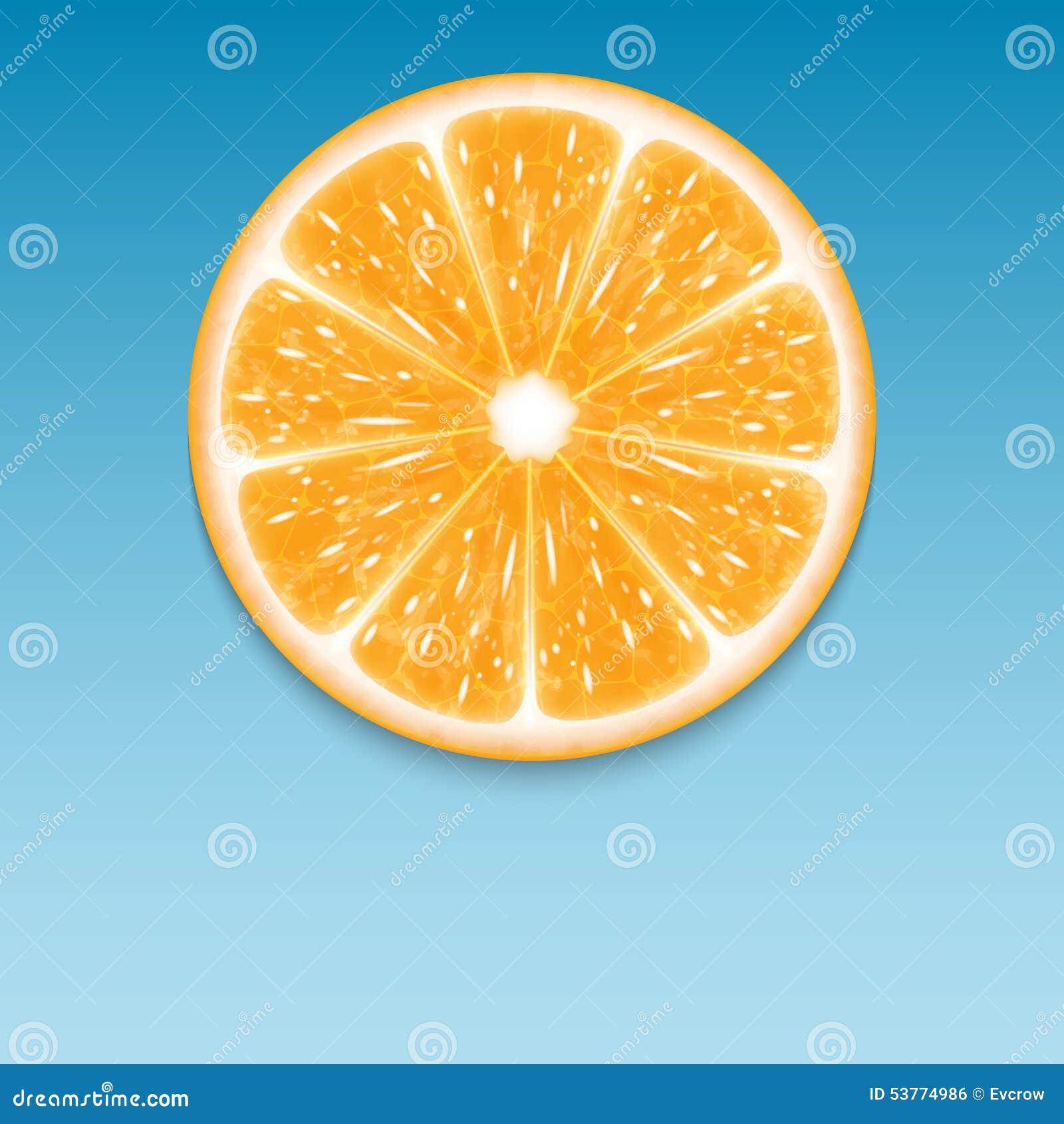 Orange slice stock vector  Illustration of cover, freshness
