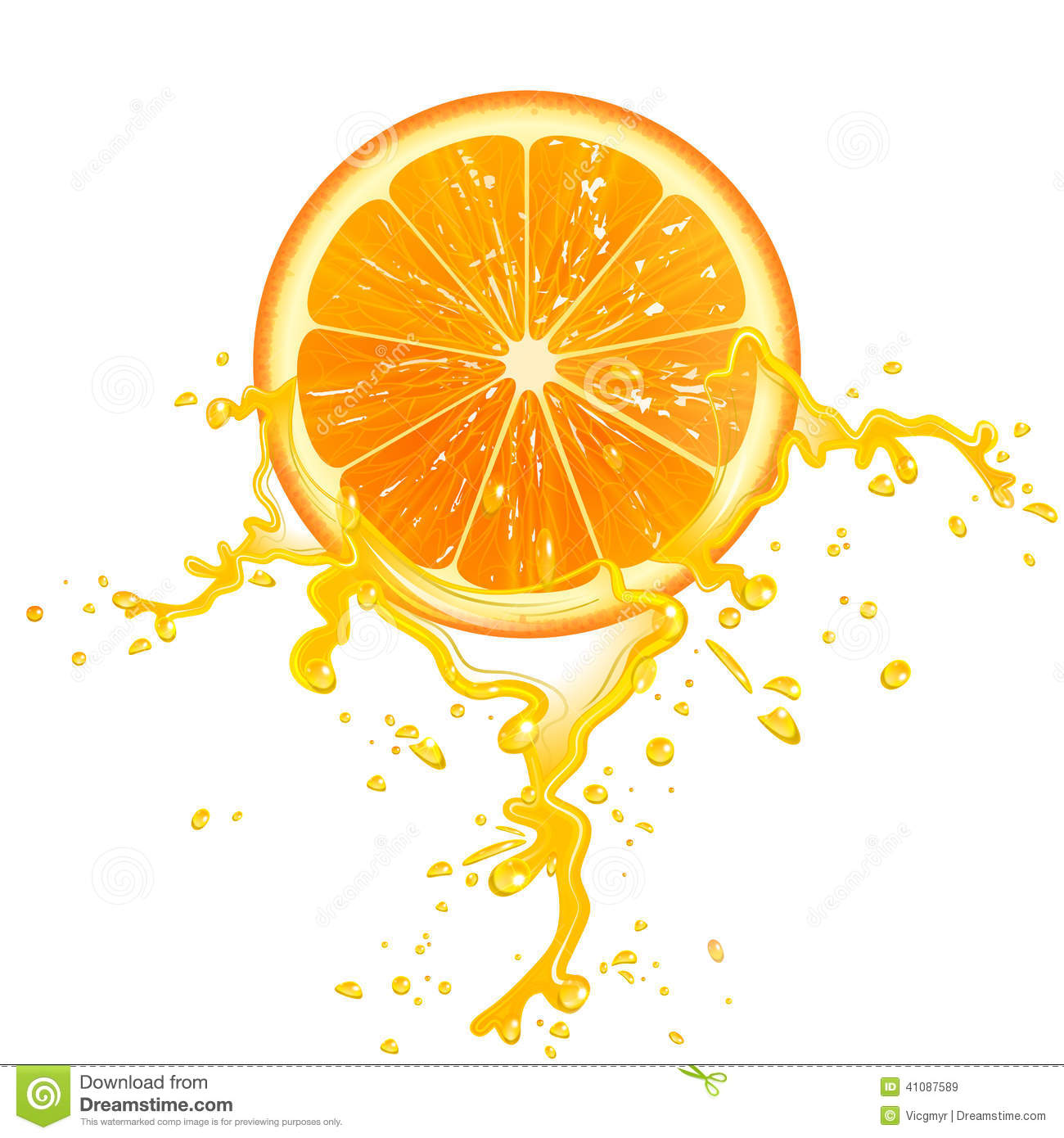Orange Slice Stock Vector - Image: 41087589