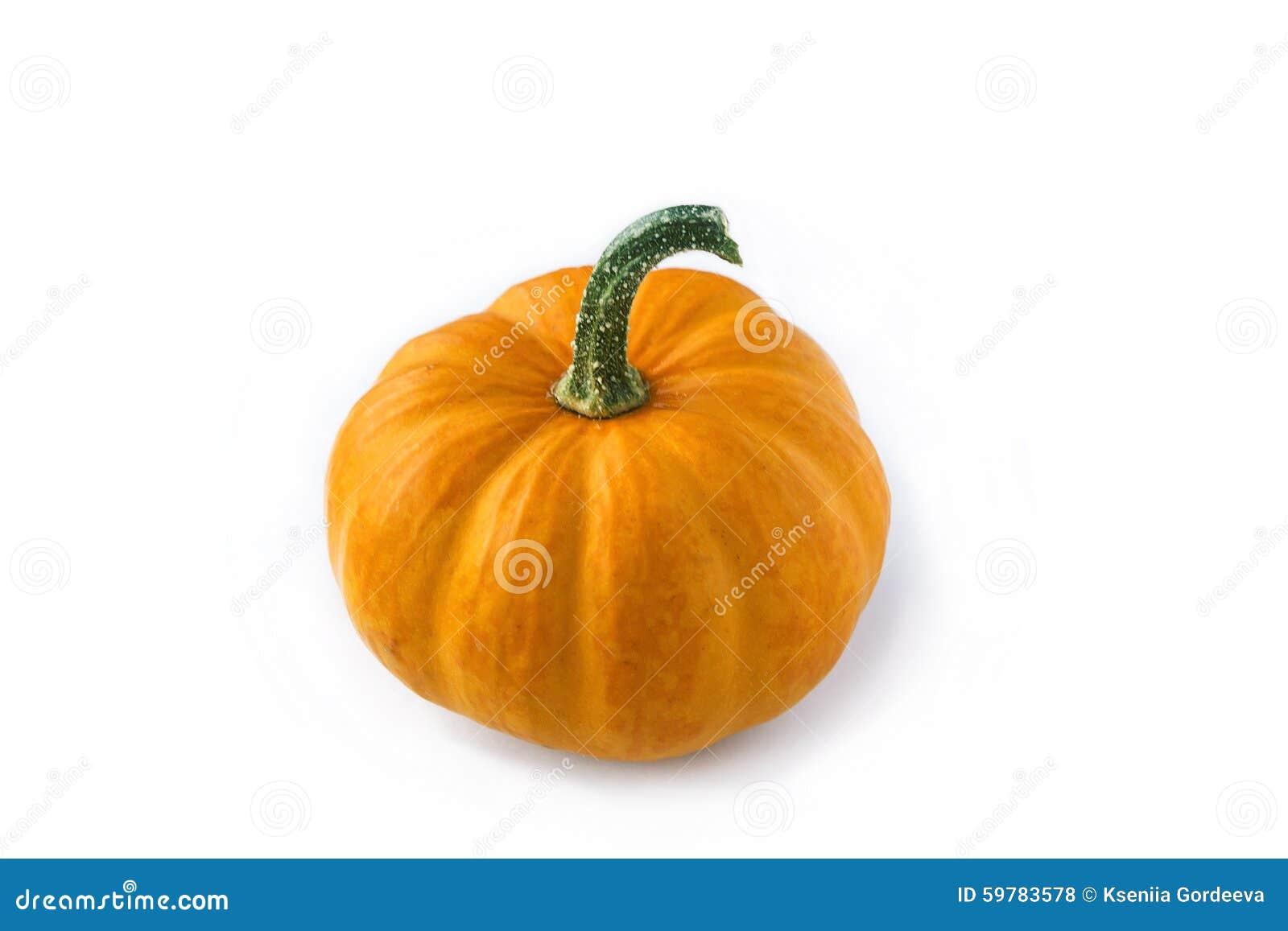 Mini Pumpkin – Jack Be Little | Autumn Harvest Pumpkins