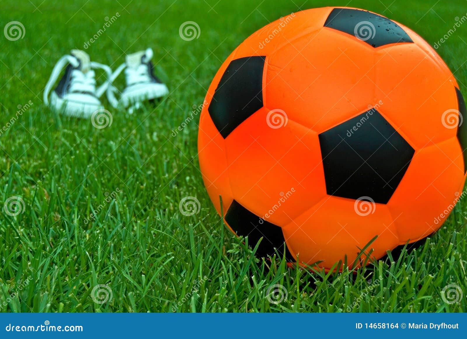 orange soccer ball stock photo image of game vivid 14658164