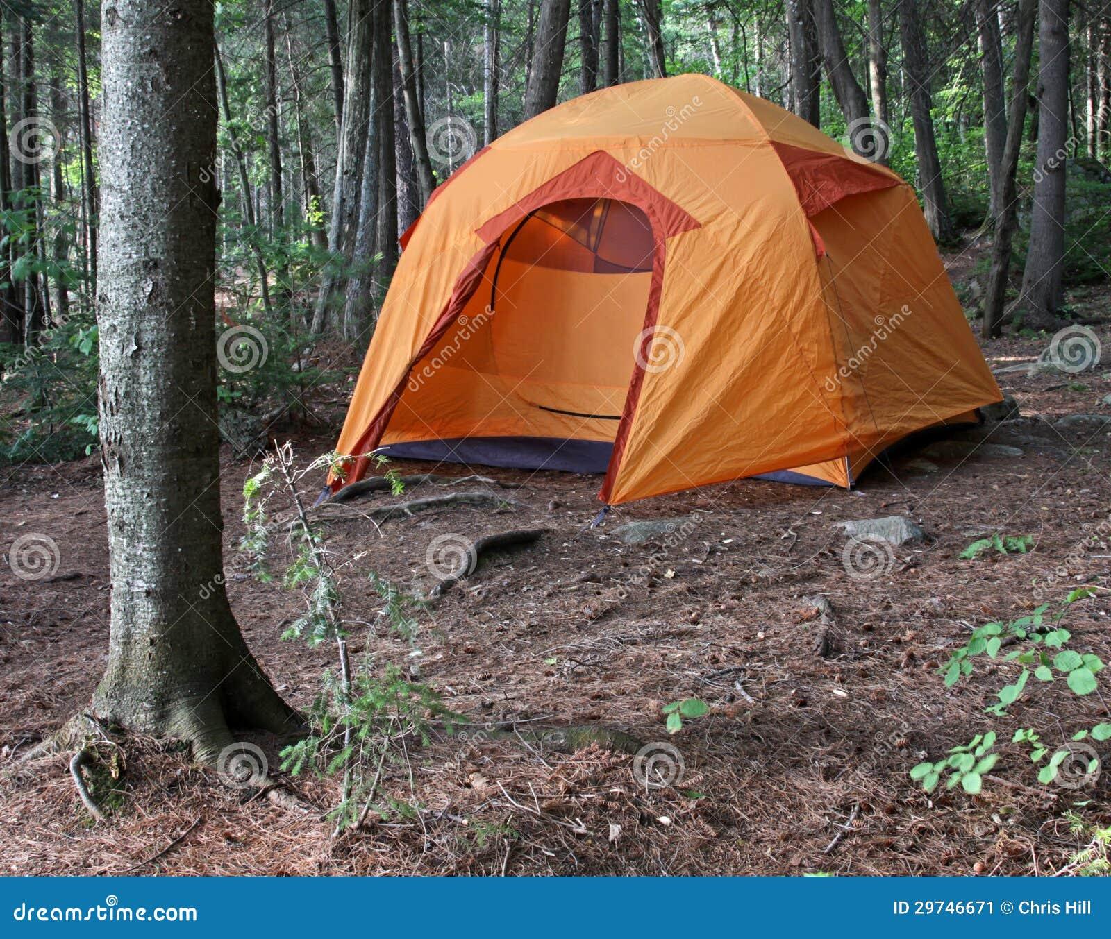 Orange Tent In The Woods Stock Image Image 29746671