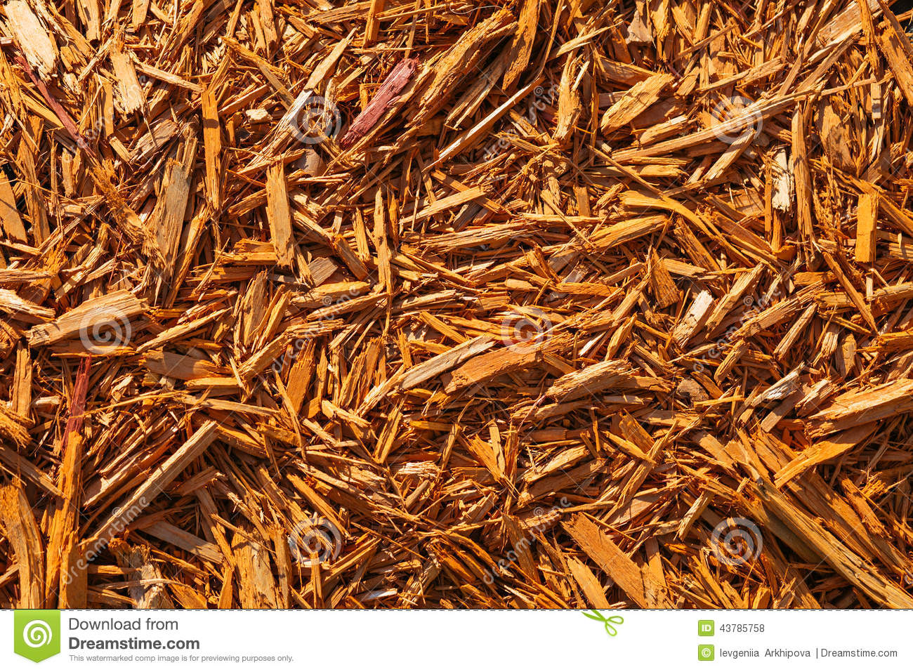Biomass Wood Chips ~ Wood chips texture wooden biomass background royalty free