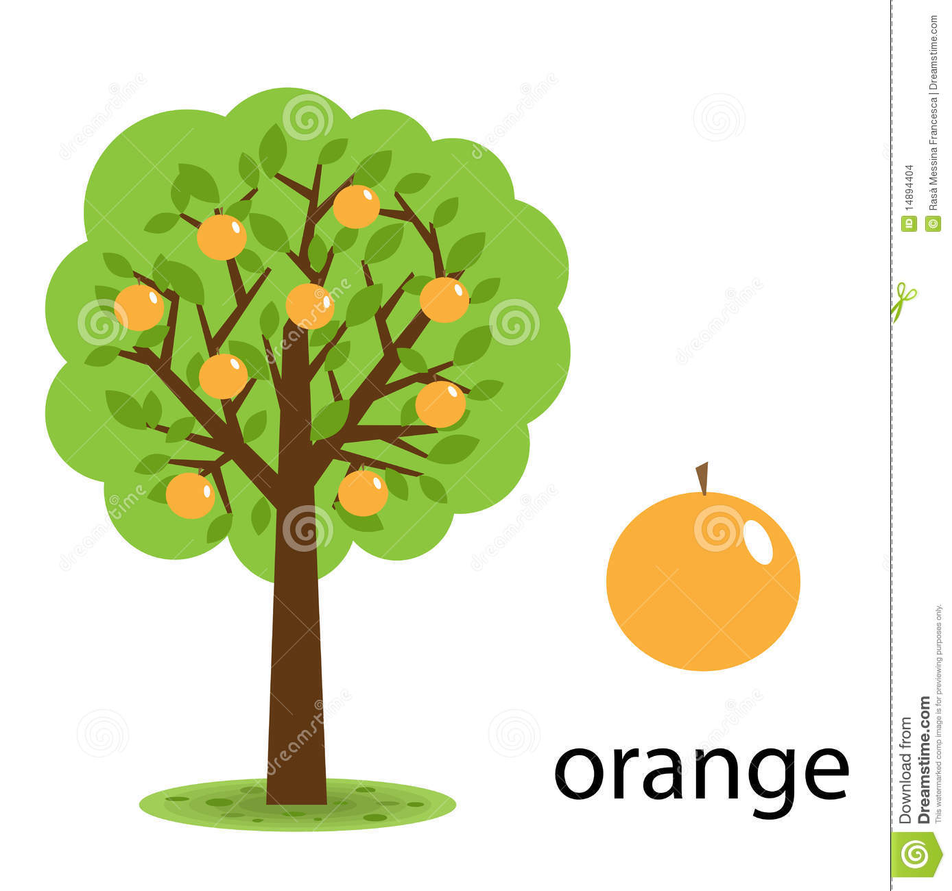 Orange tree stock vector. Image of abstract, natural ...