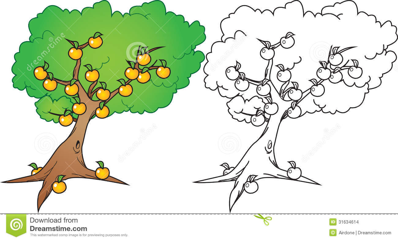 Orange Tree Stock Images Image 31634614
