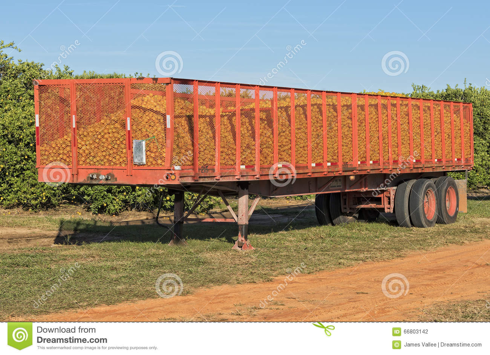 Orange Truck stock photo  Image of citrus, semi, truck - 66803142