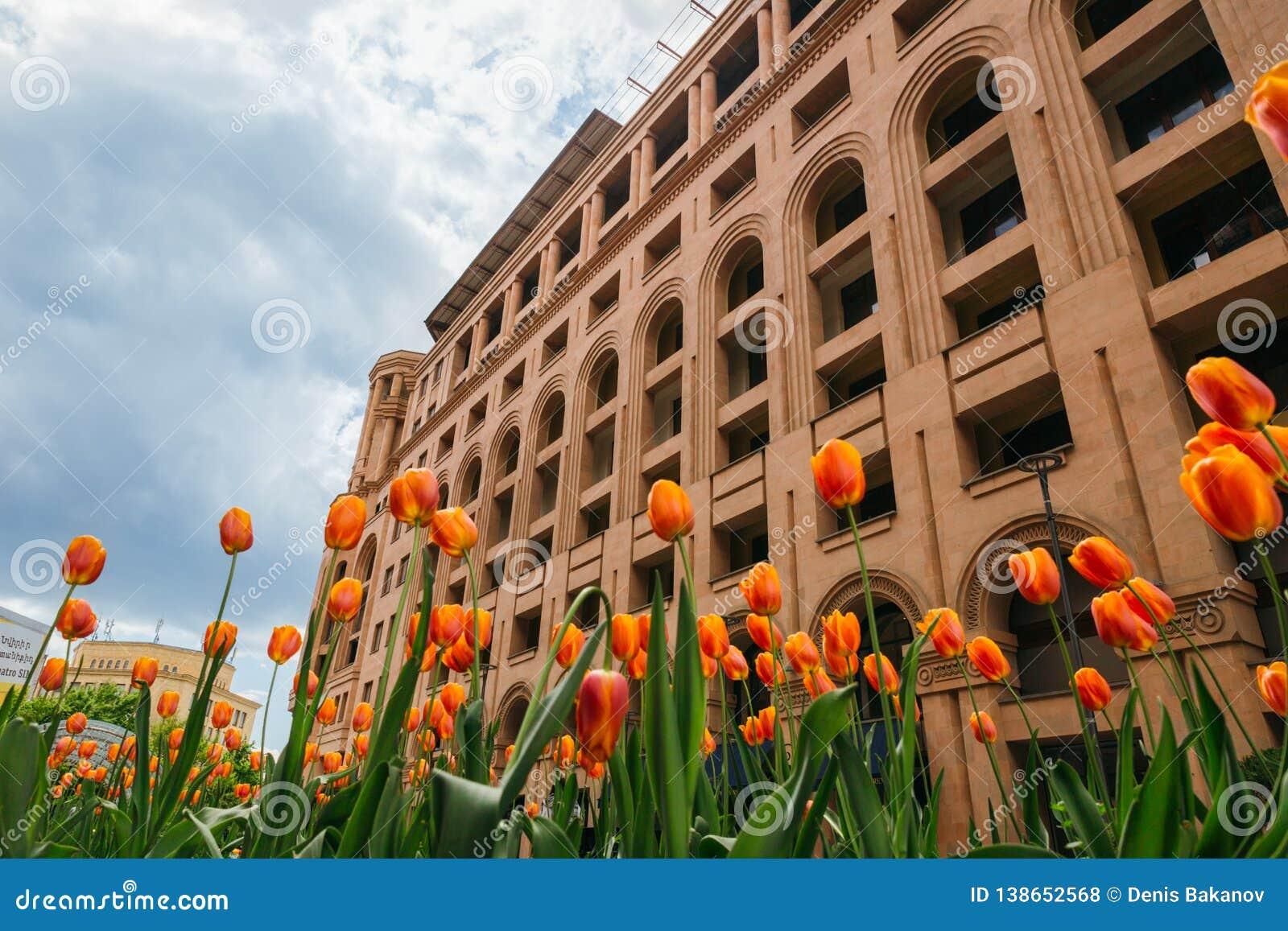 Orange tulpan framme av den monumentala byggnaden, Yerevan