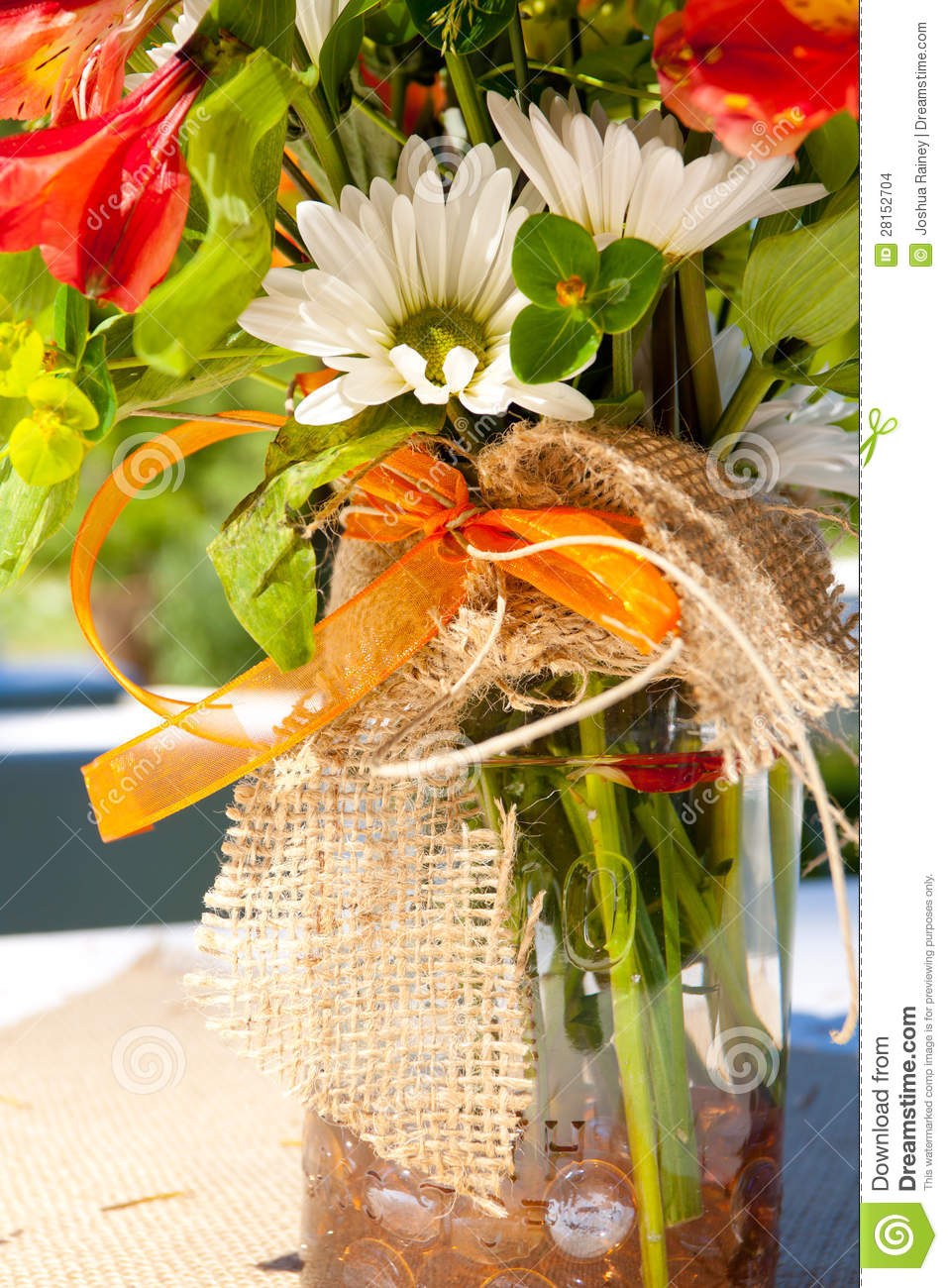 Orange And White Flowers Stock Photo Image Of Bunch 28152704