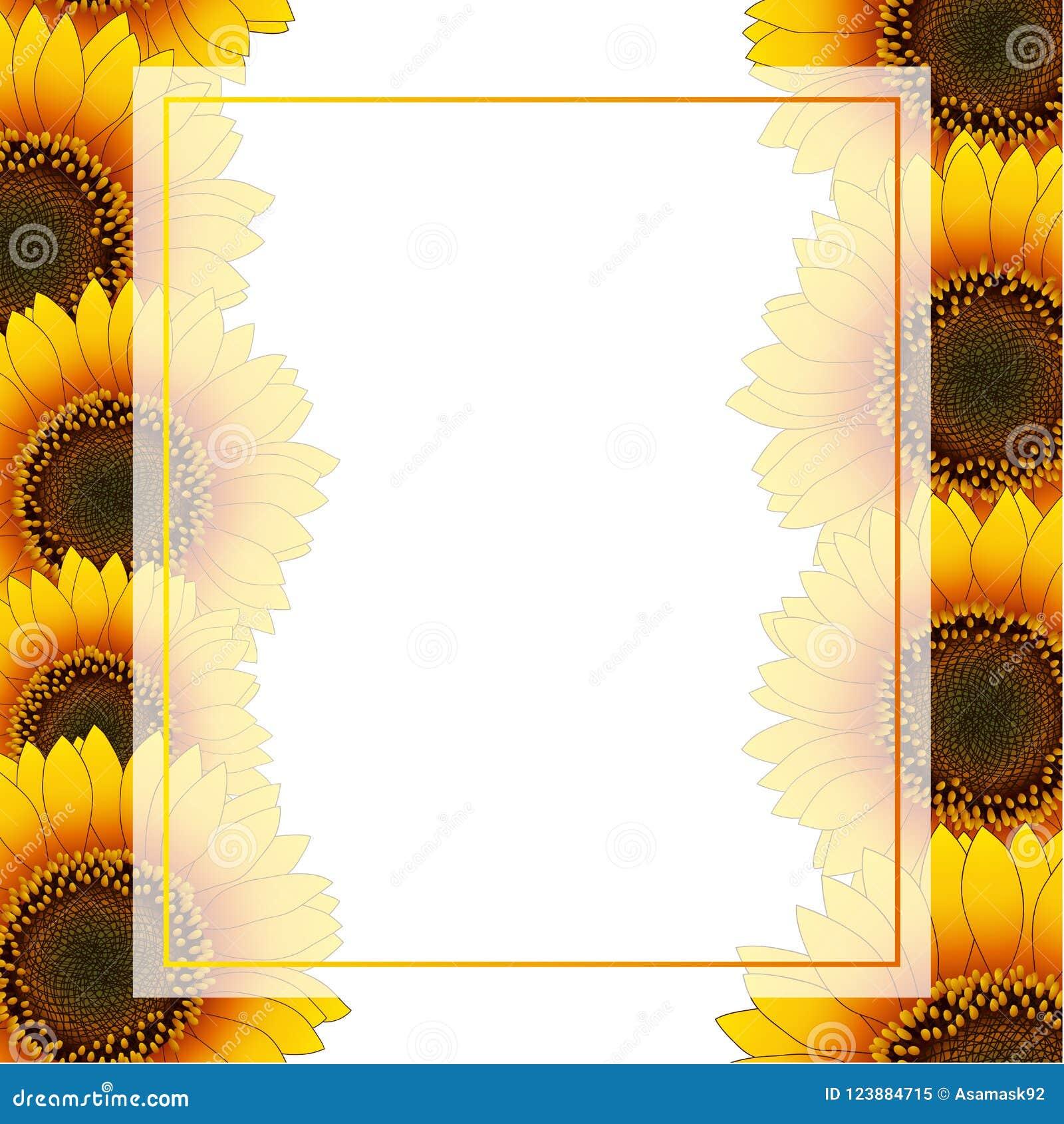 Orange Yellow Sunflower Banner Card Border isolated on White Background. Vector Illustration