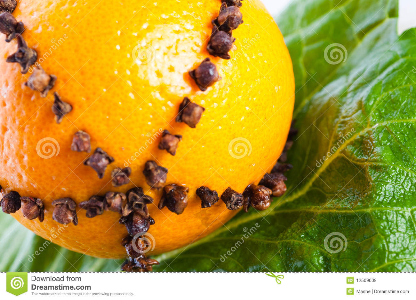 orangen verziert mit nelken stockbild bild 12509009. Black Bedroom Furniture Sets. Home Design Ideas