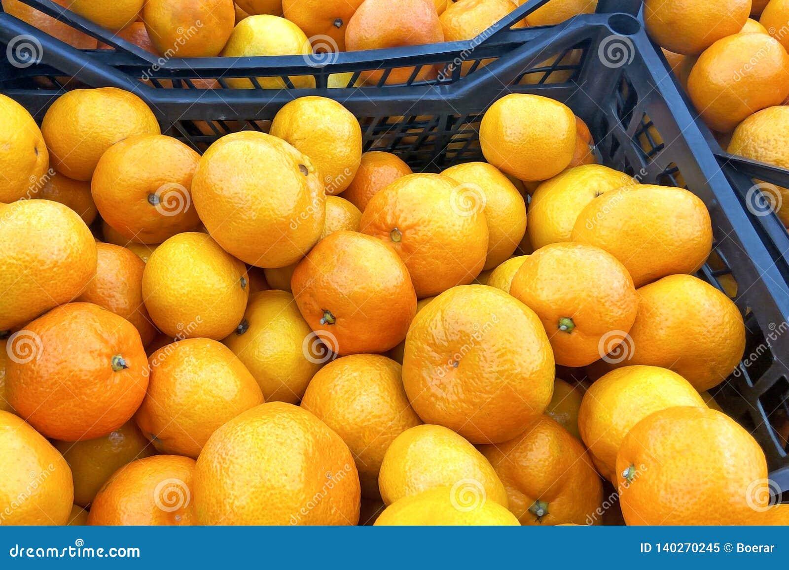 Oranges oranges juteuses de mandarines, mandarines, clémentines, agrumes avec des feuilles sur le marché