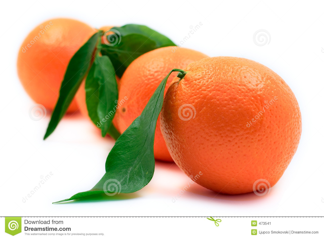 Oranges lined up