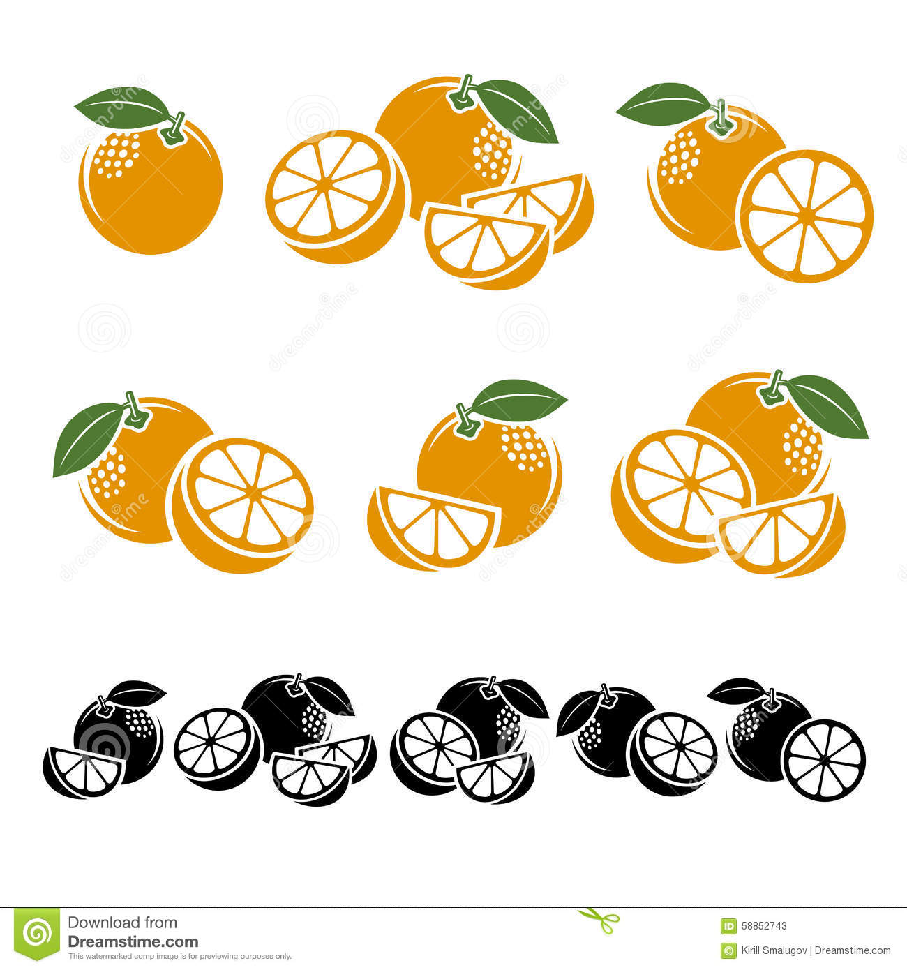 Oranges set. Vector