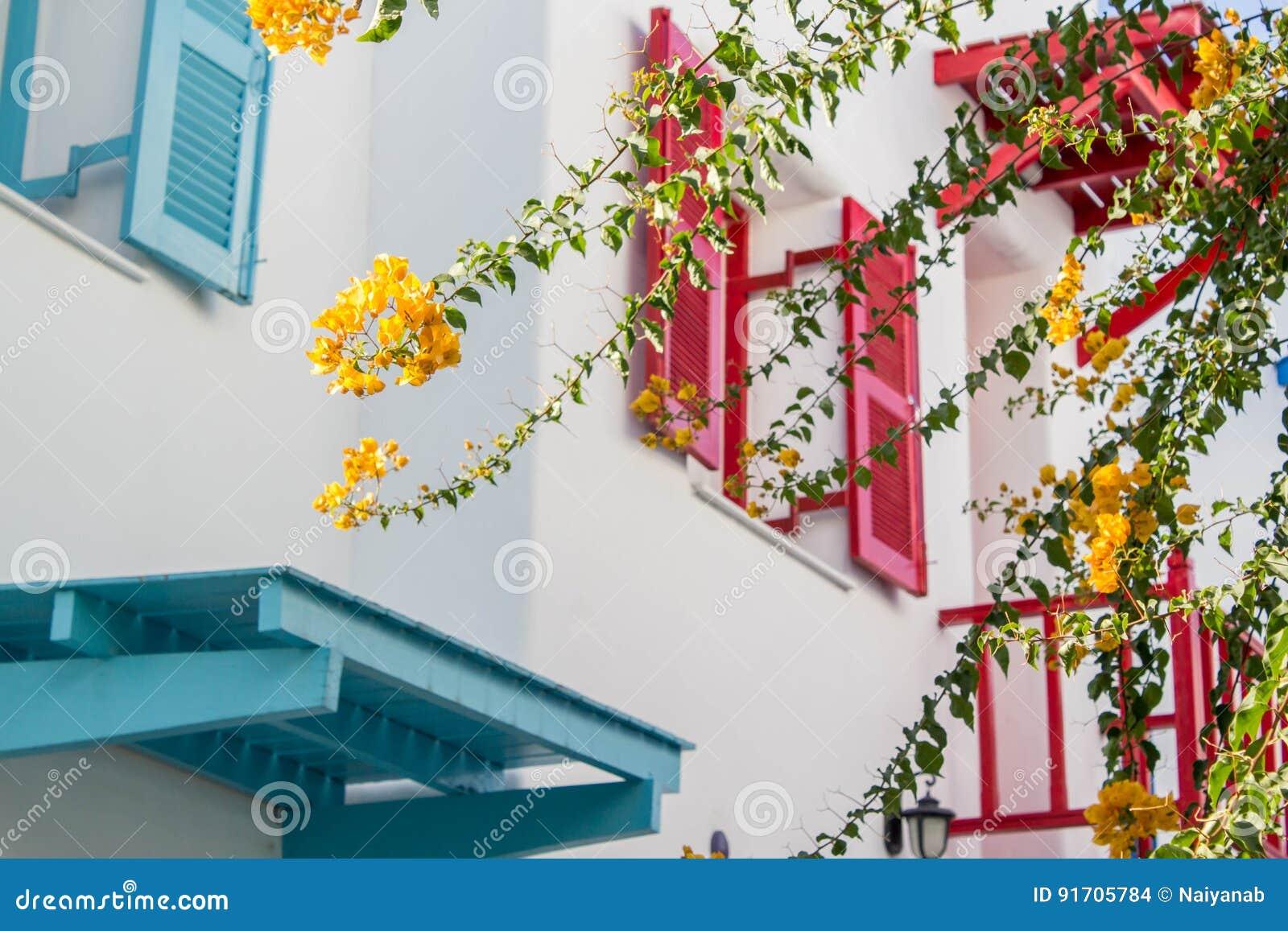 Oranje bougainvillea, document bloemen op achtergrond van kleurenvenster