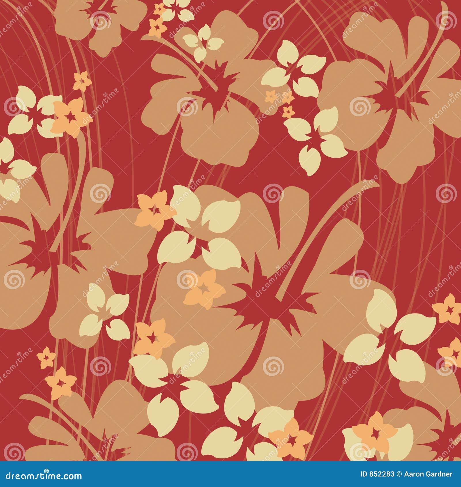 Oranje hibiscus