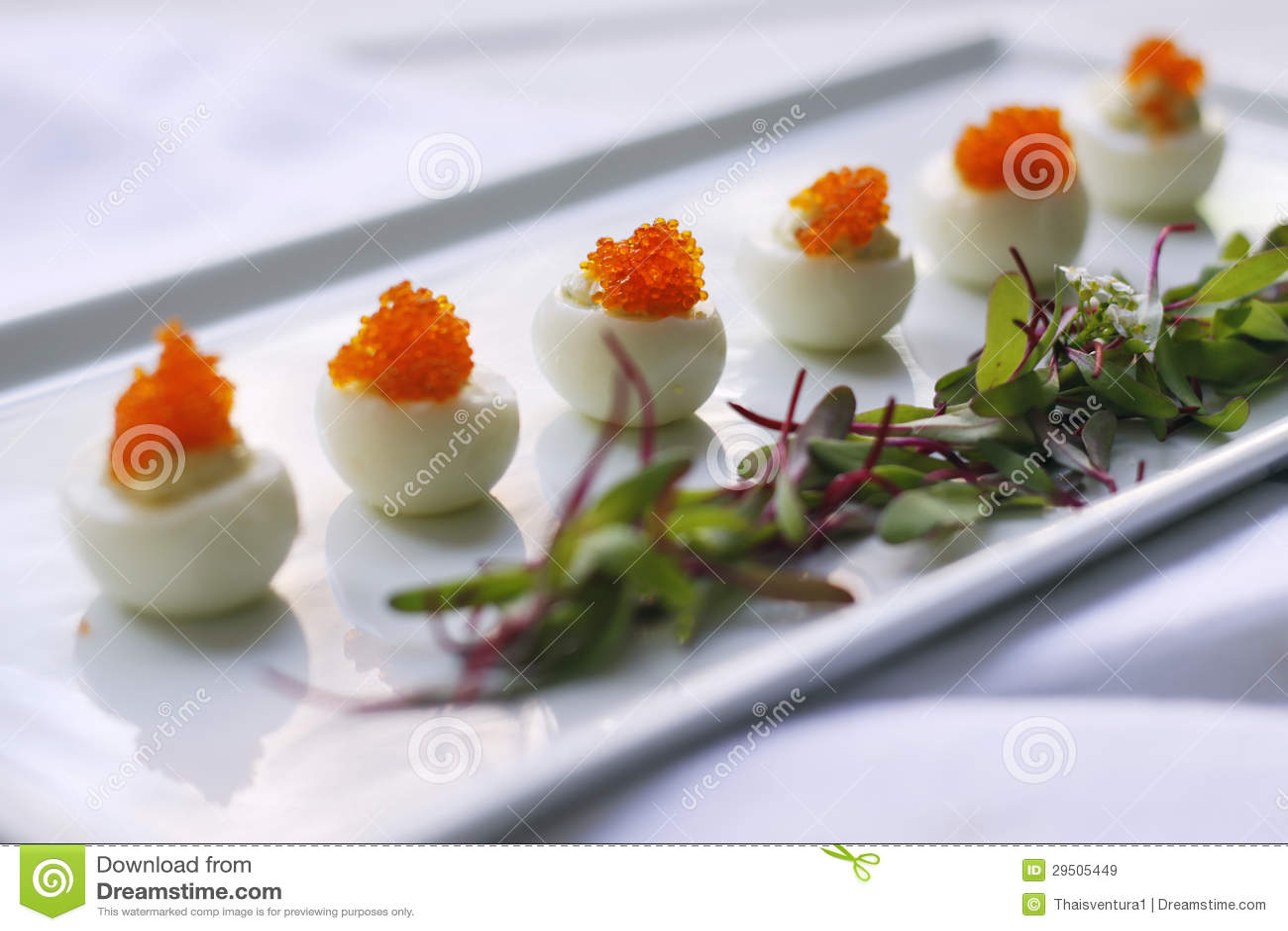 Oranje kuiten