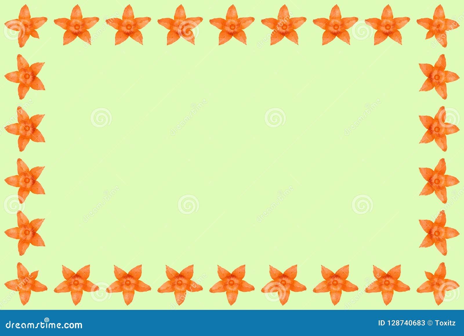 Oranje physalisachtergrond, kader en grens, exemplaar ruimtefoto
