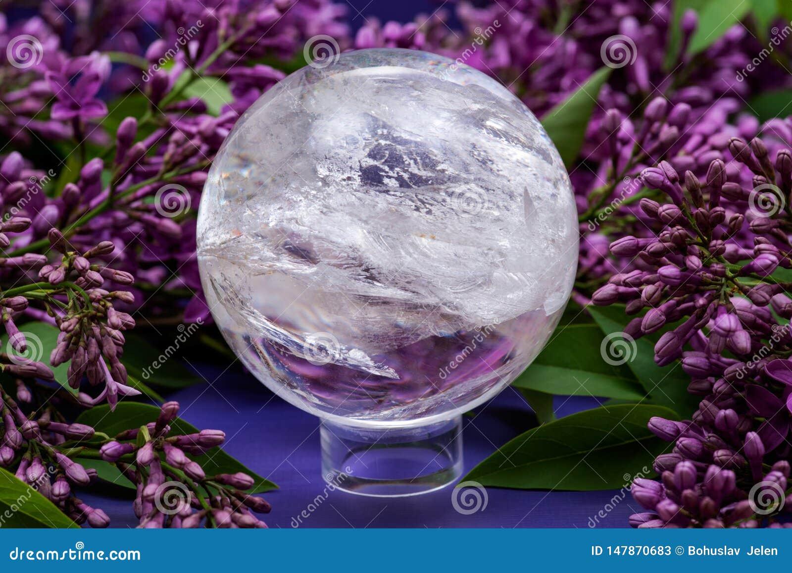 Orb för kristall för sfär för Lemurian frikändkvarts som magisk omges av den purpurfärgade lila blomman