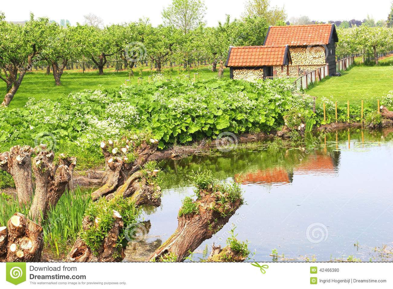 Picturesque Agricultural Fruit-growing Industries, Tricht ...