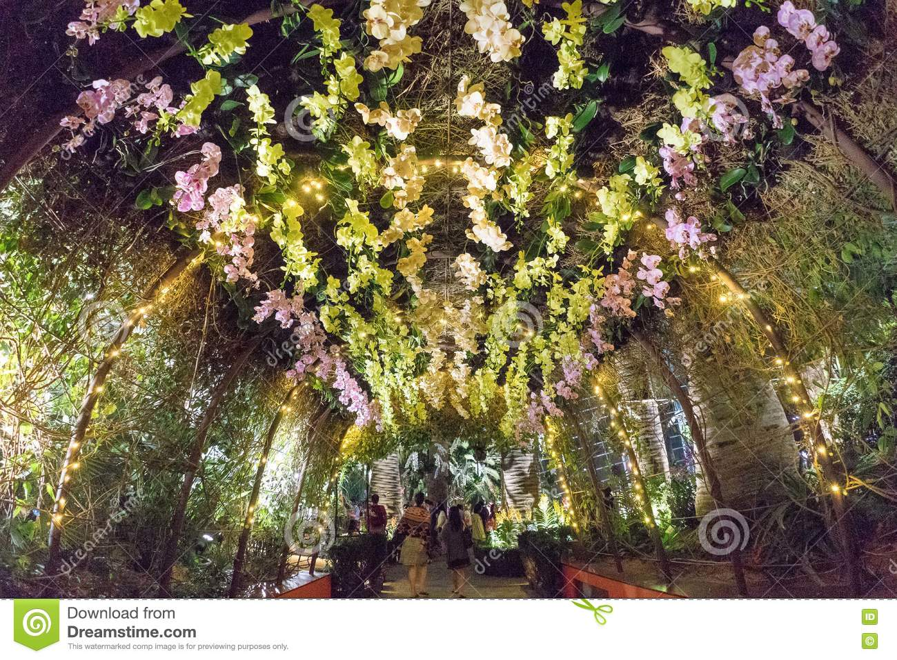 Orchid Extravaganza, Gardens By The Bay, Singapore Editorial Photo ...