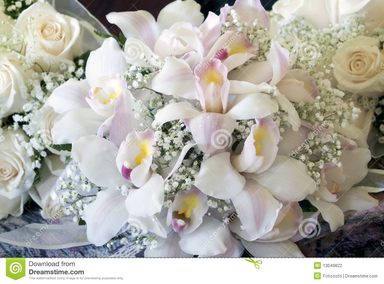 Orchid flower bouquet stock photo. Image of plant, flower - 13049822