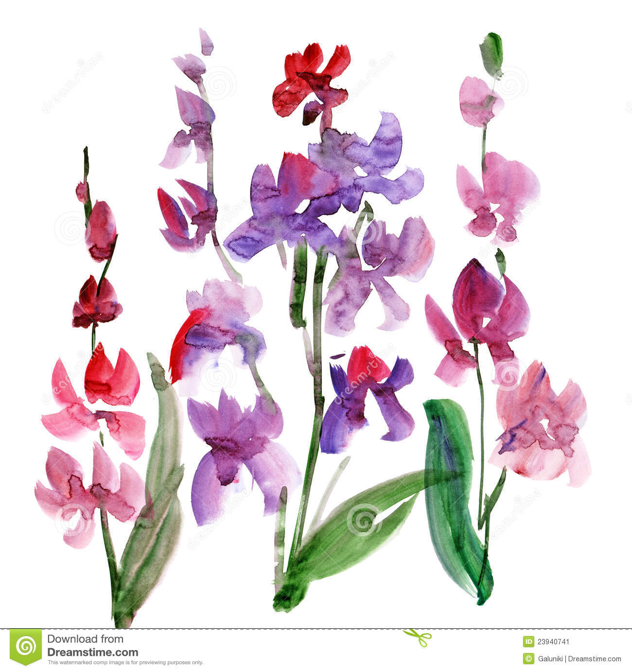 More Similar Stock Images Of Orchid Flower Watercolour