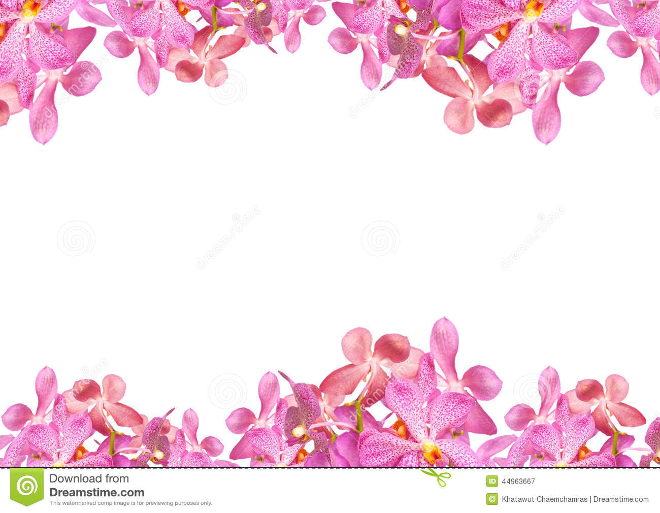 Red flowers border vector stock image - Orchid Flowers Border