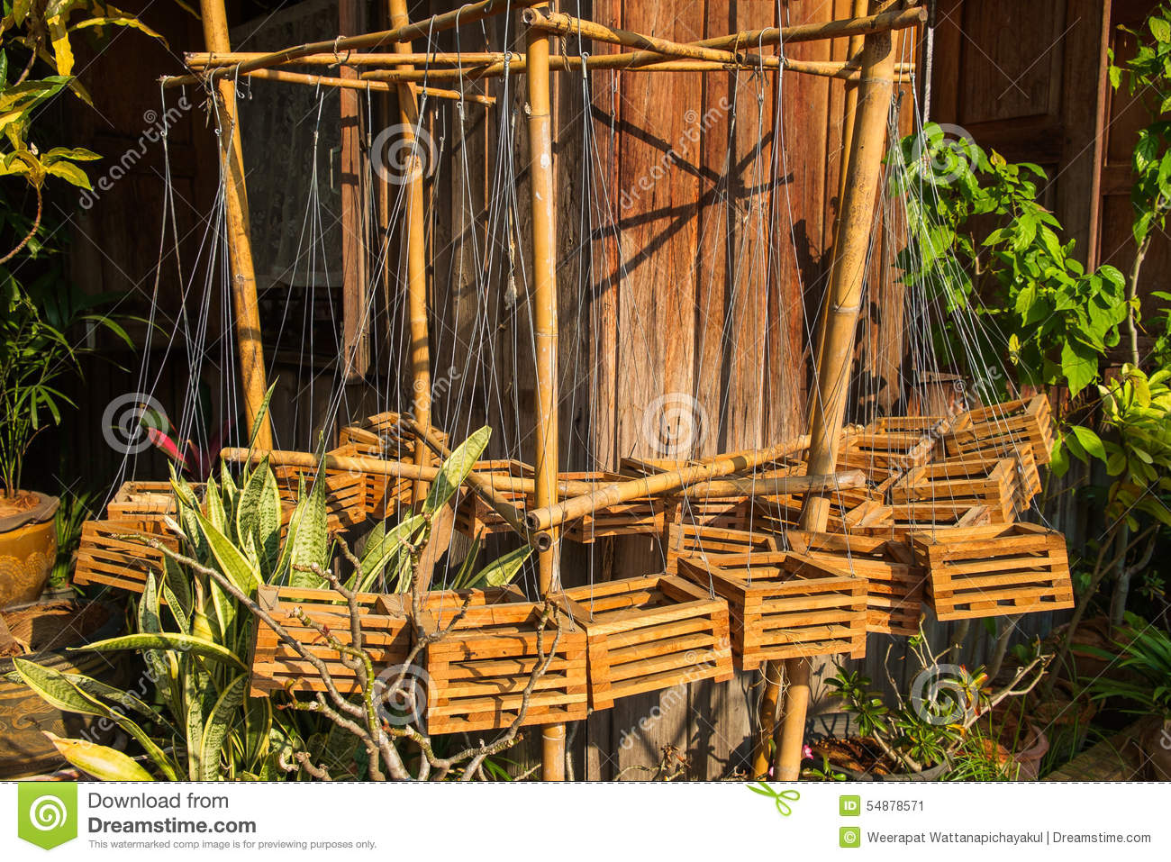 Orchid Wood Basket Stock Image Image Of Container Hanged 54878571