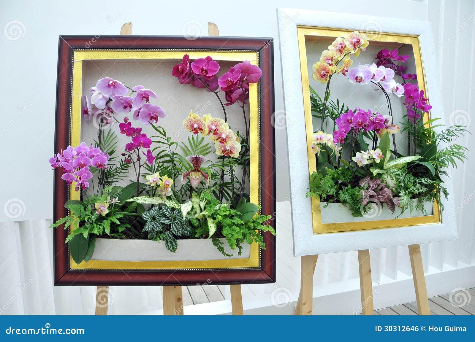orchid e de mite dans le cadre image libre de droits. Black Bedroom Furniture Sets. Home Design Ideas